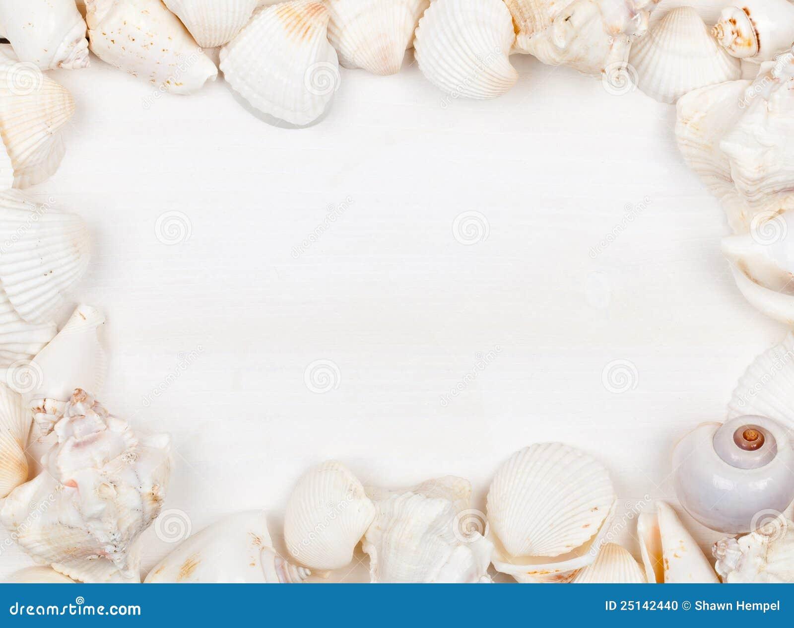Seashell рамки