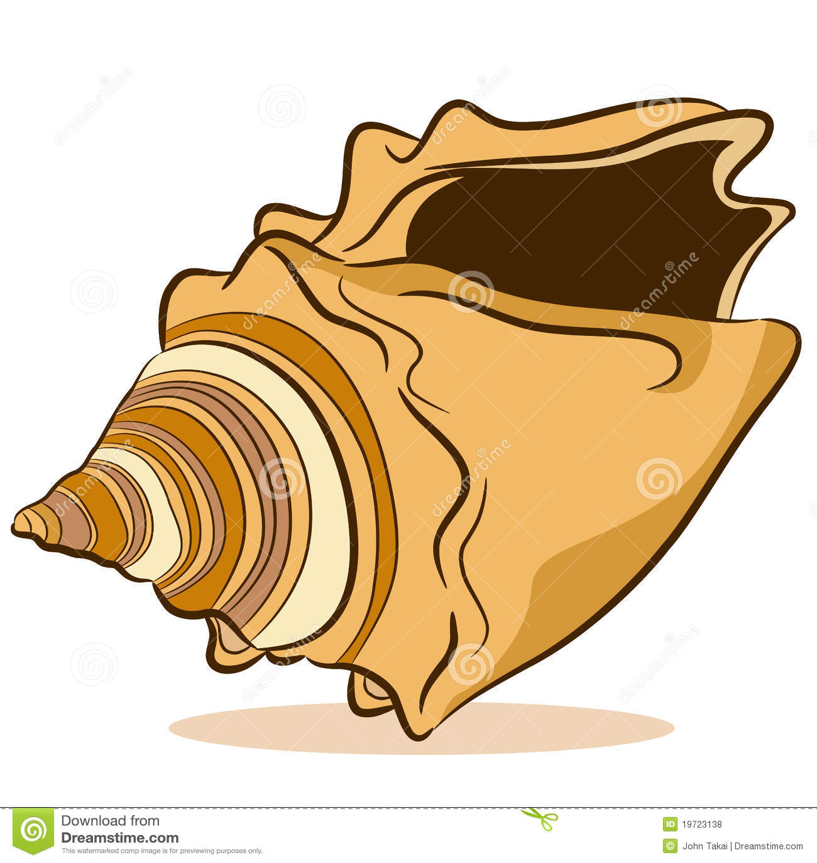 Seashell Drawing Royalty Free Stock Photos - Image: 19723138