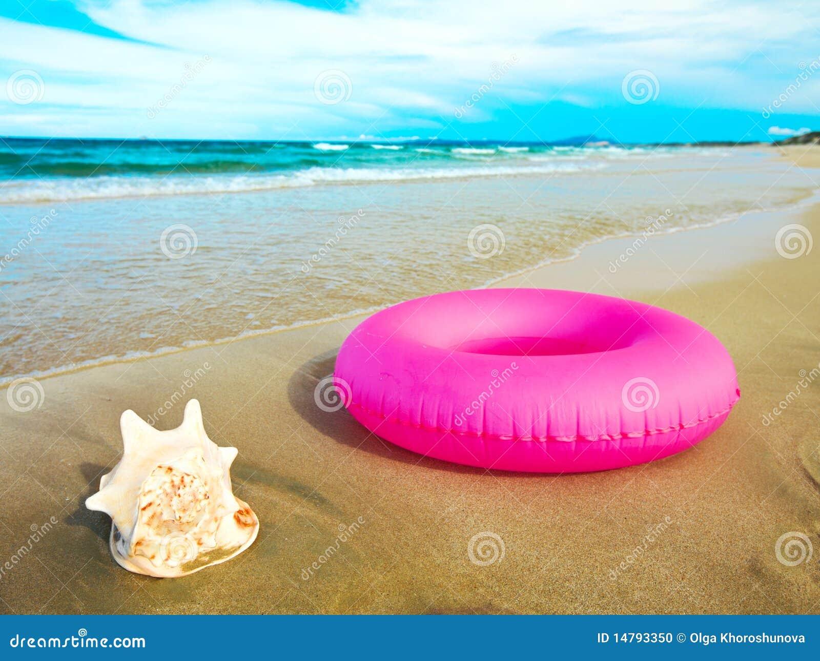 Seashell et tube