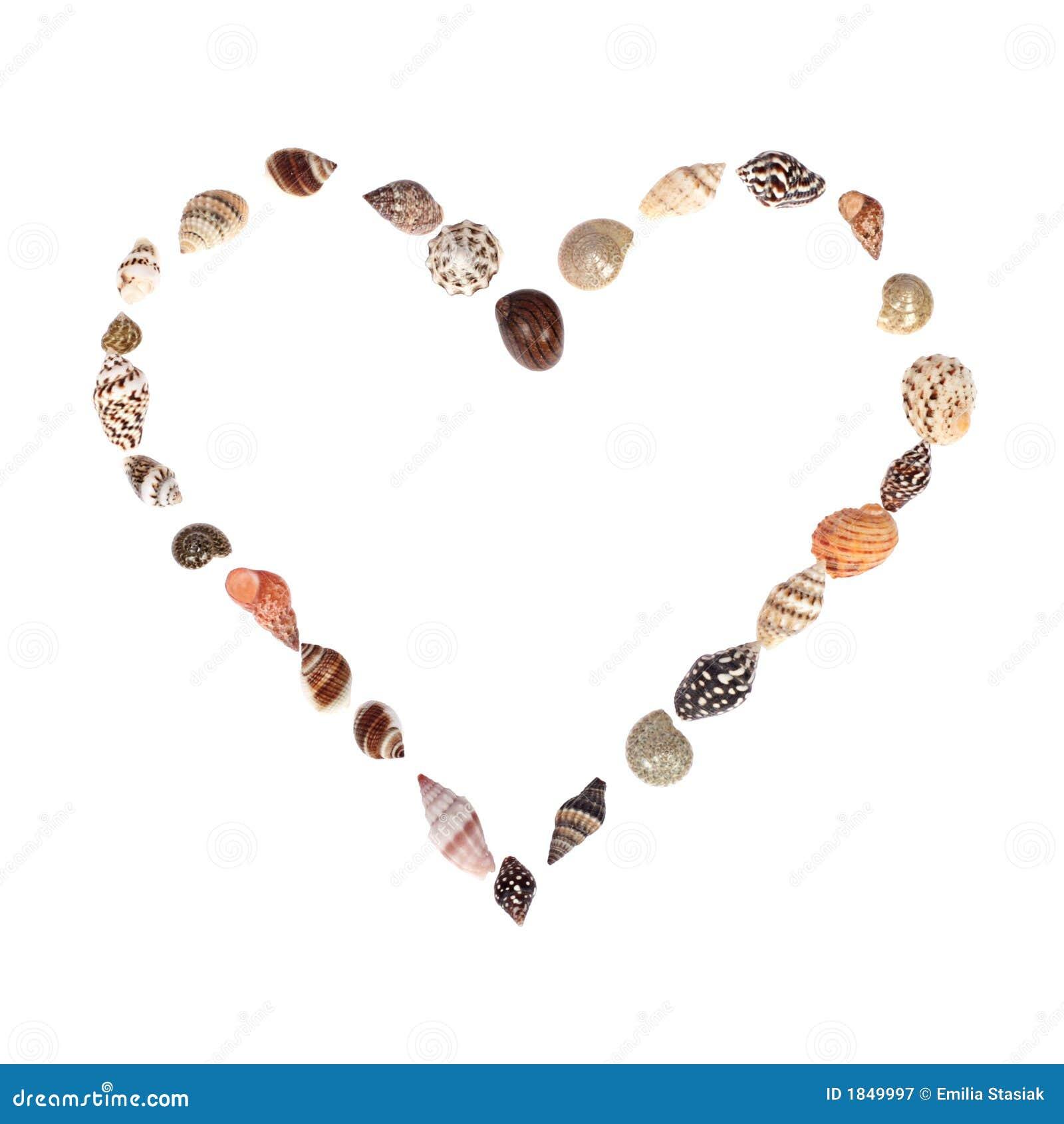 Seashell Heart Royalty Free Stock Photography - Image: 1849997