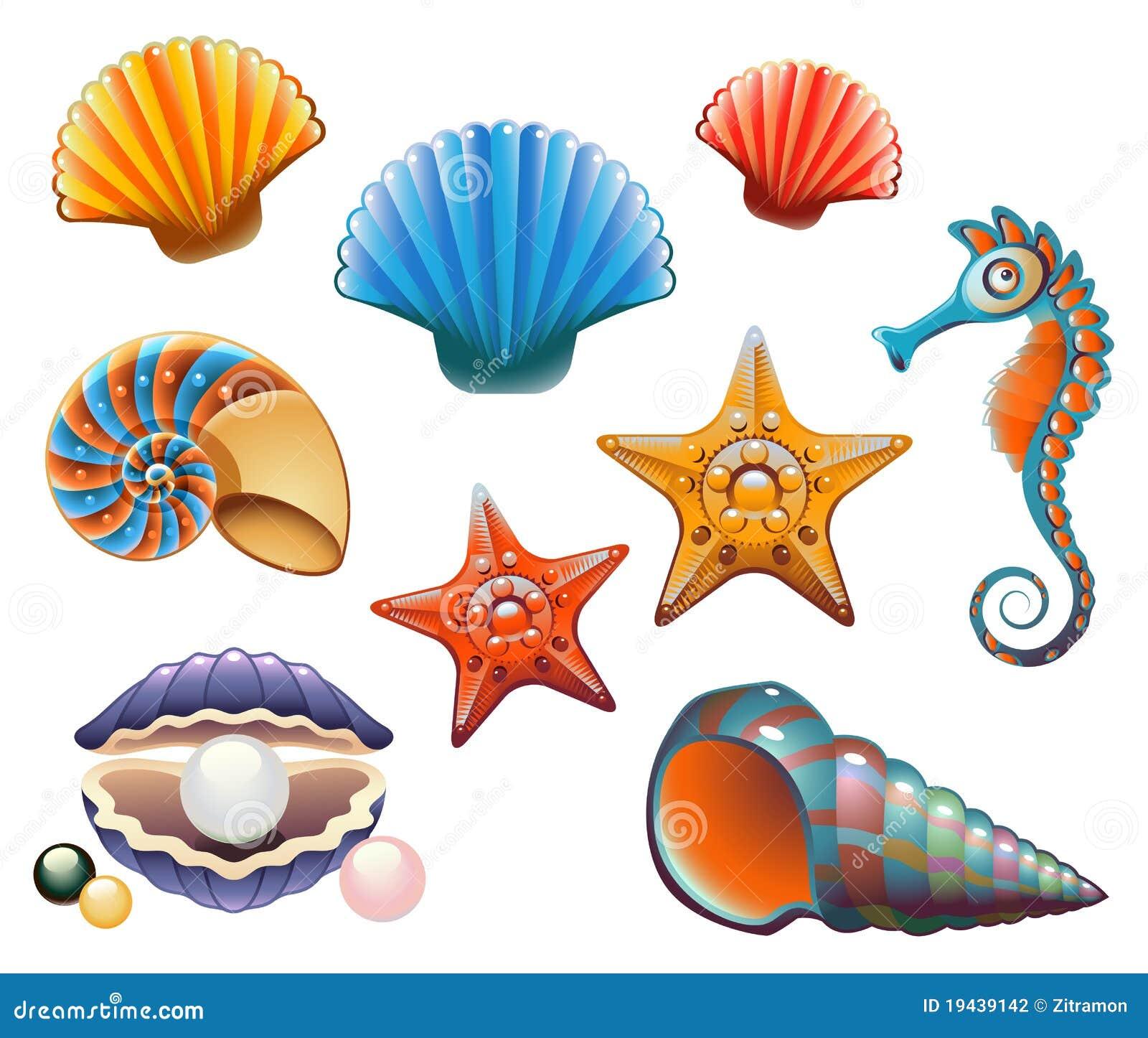 seashell set stock vector illustration of summer scallop