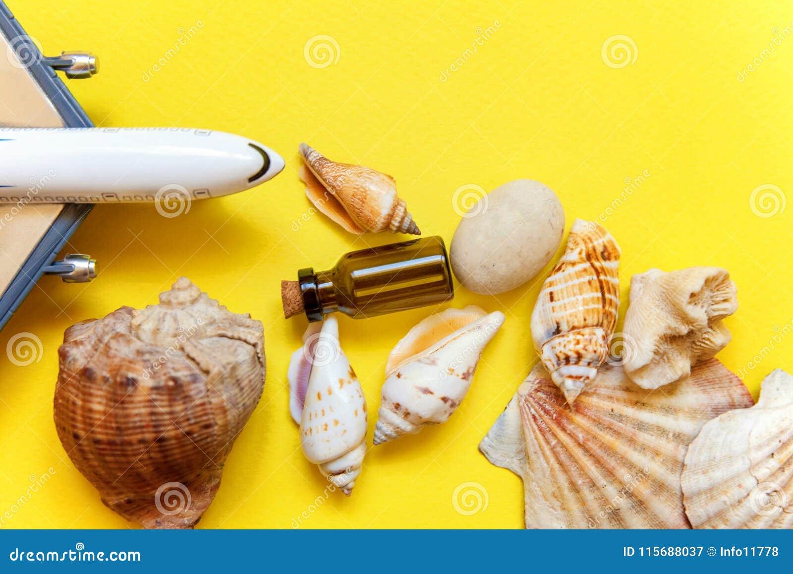 Seashells и самолет на желтой предпосылке