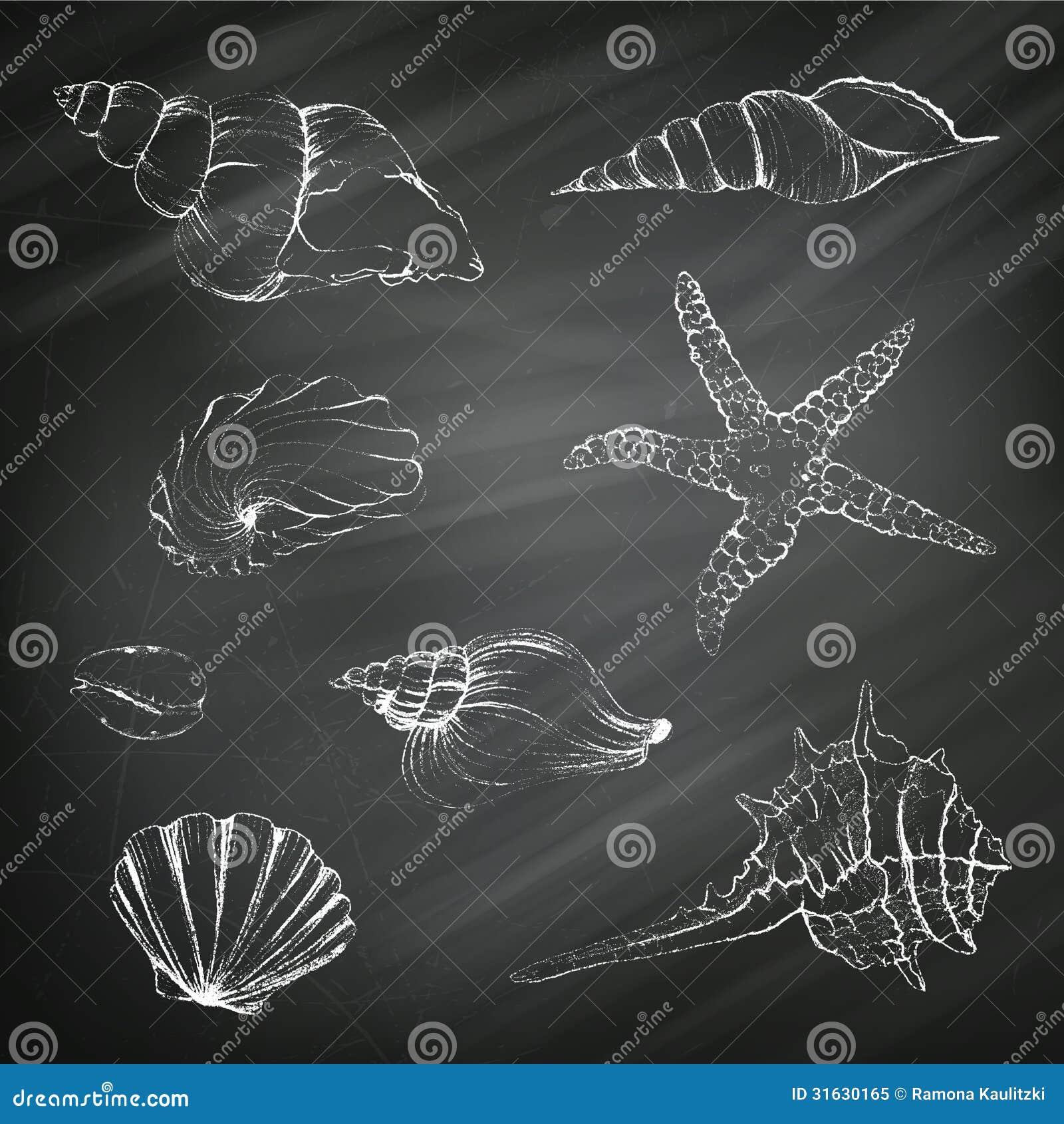 Chalk from sea shells