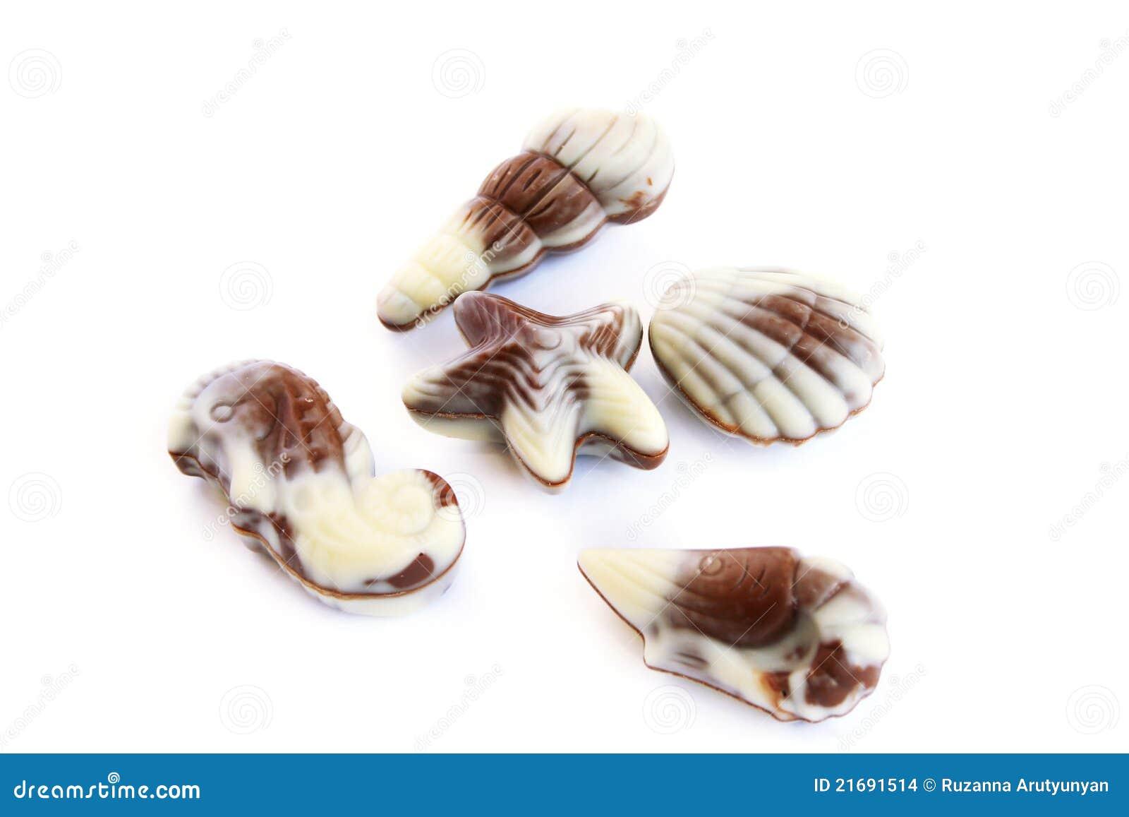 Seashells de chocolat