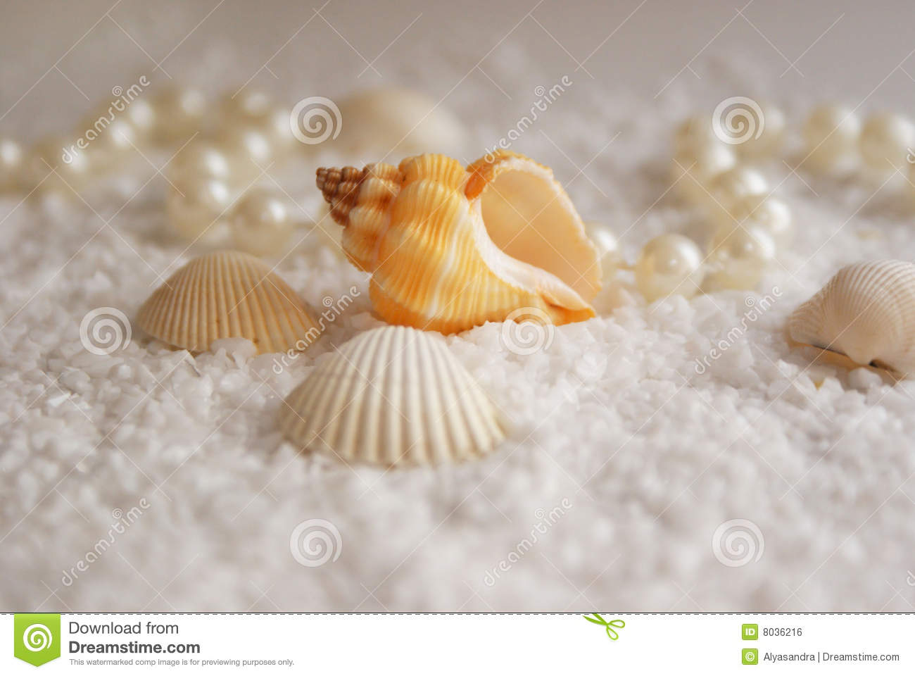 The seashells and the pearls