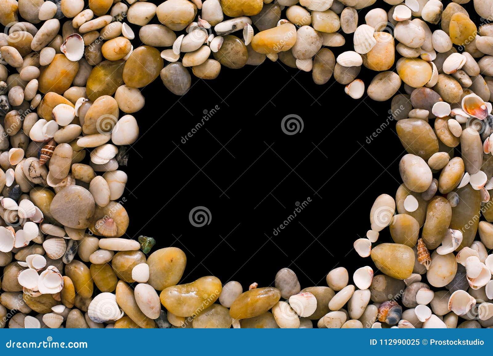 Seashells and pebbles on black background, natural seashore stones