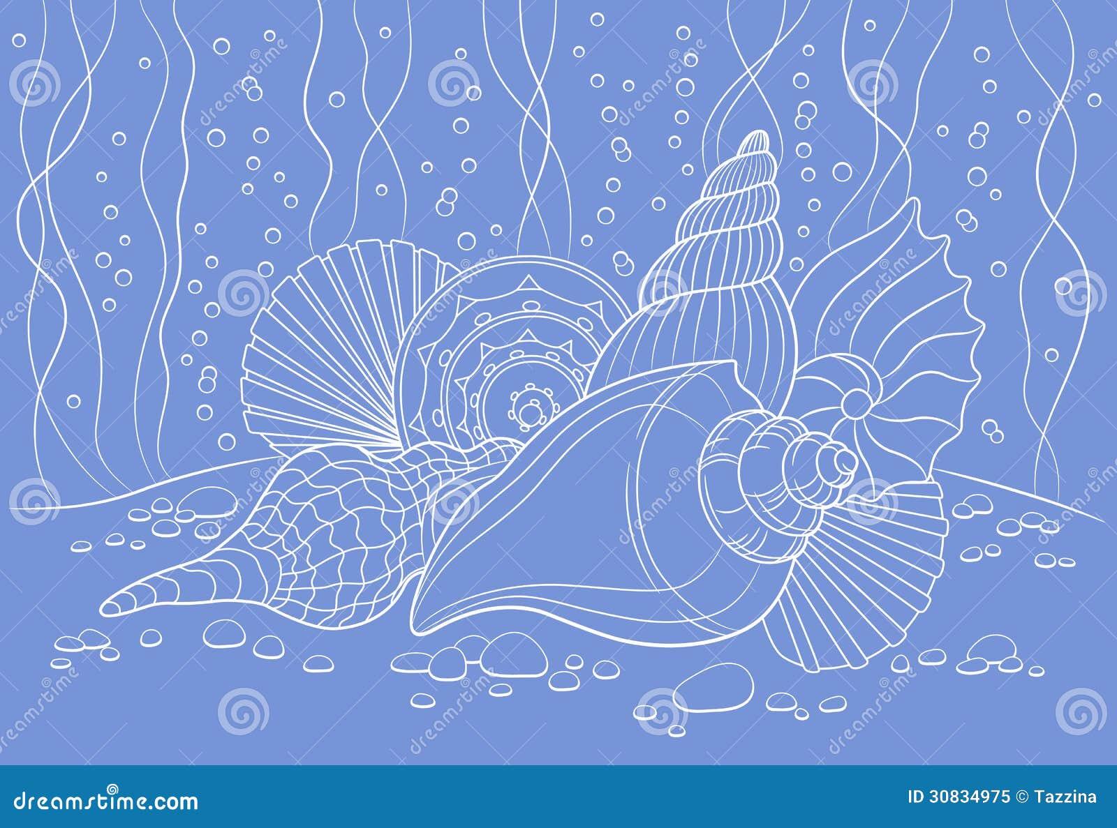 Vector Illustration Web Designs: Seashells Stock Vector. Illustration Of Cruise, Pattern