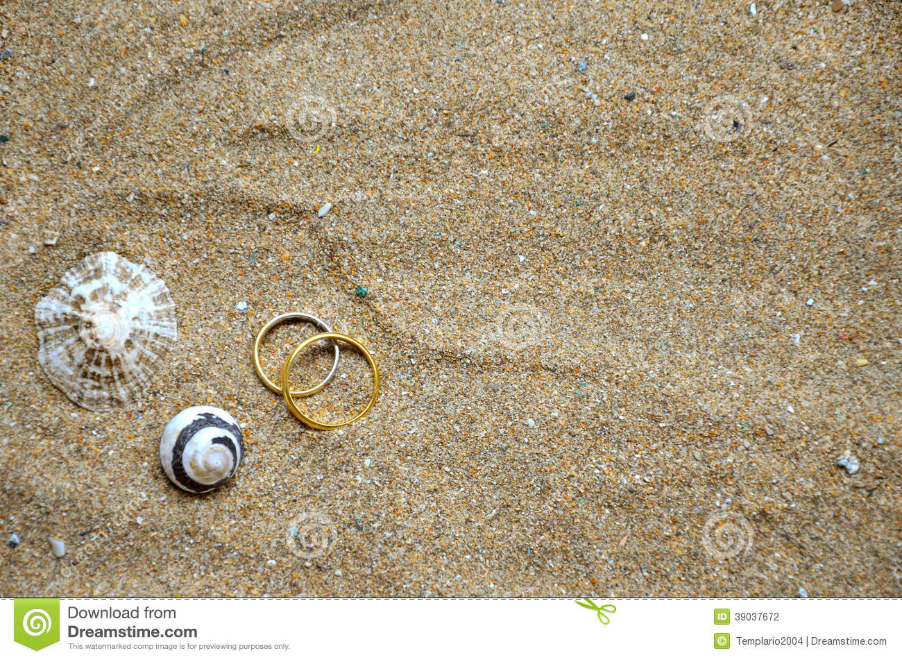Seashells And Wedding Rings On The Sand Stock Photo. .85 Carat Engagement Rings. Eastern Star Rings. Promise Wedding Rings. Mothers Rings. Lotr Dwarf Wedding Rings. Gold Chinese Wedding Rings. Lotus Flower Engagement Rings. Angagement Engagement Rings