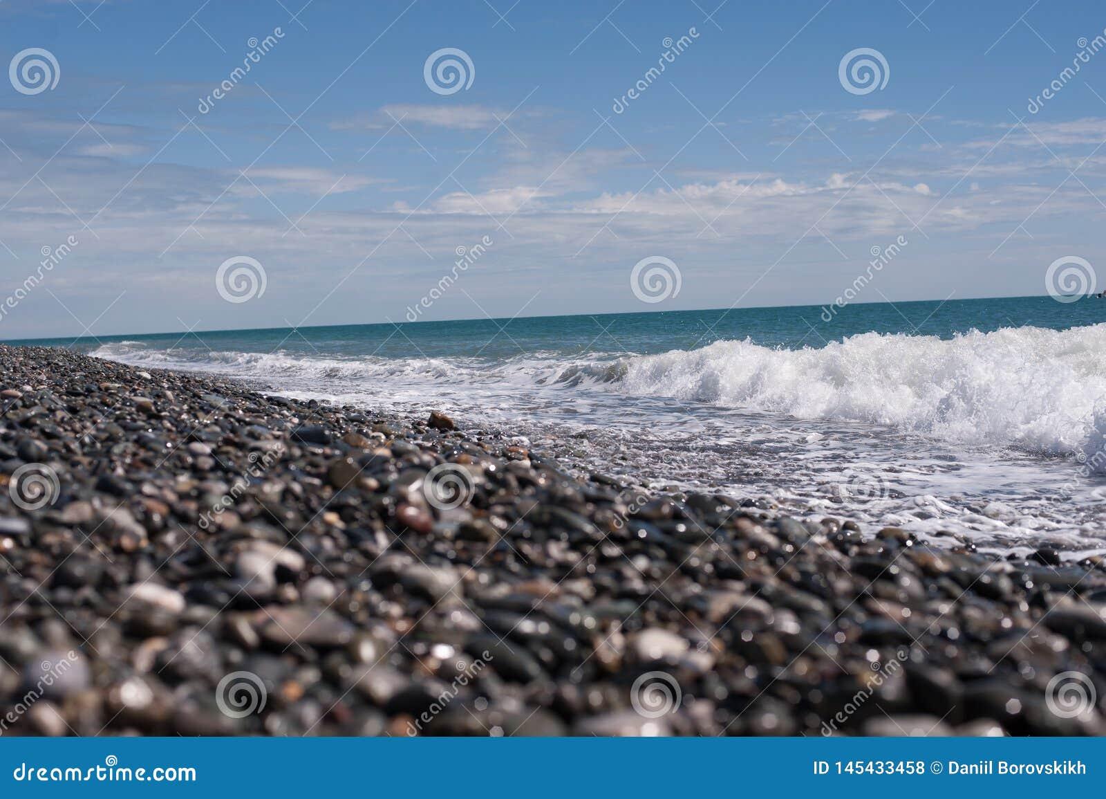 Seashore z niebieskim niebem