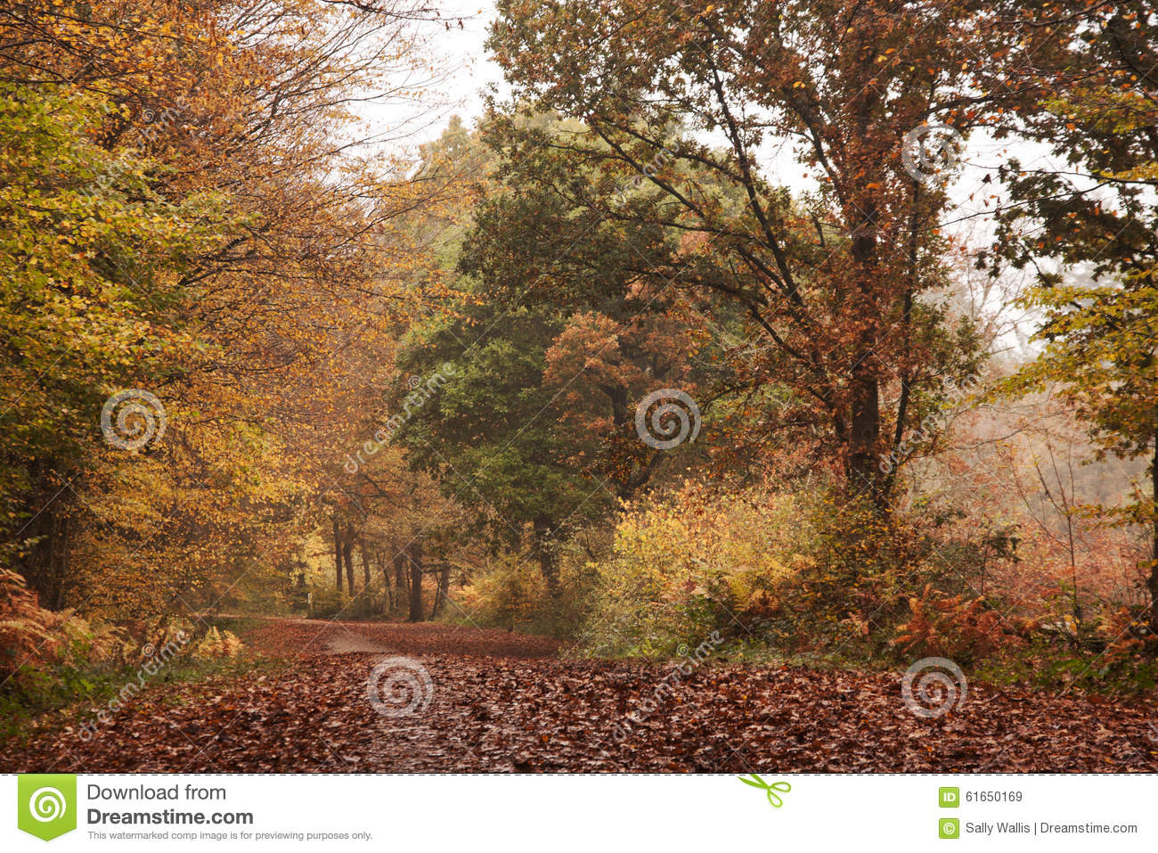 In Keats' Ode, why is autumn season called