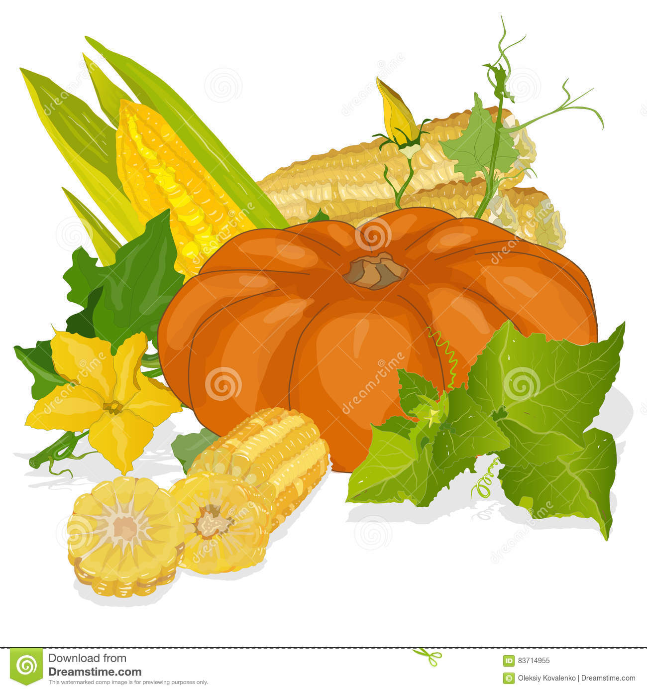 Seasonal Background With Pumpkins And Corn Stock Vector