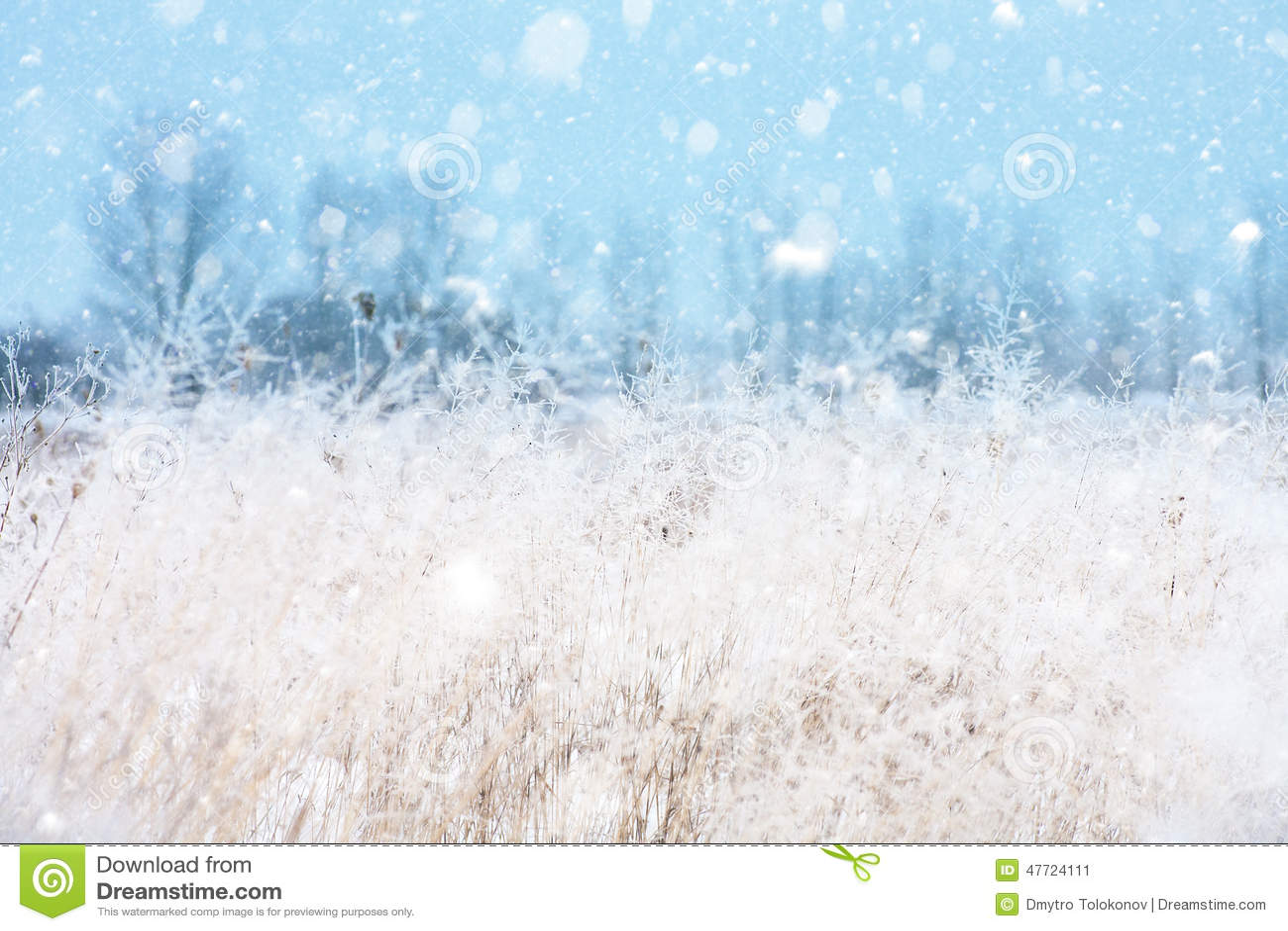Seasonal Backgrounds With Snowfall Stock Image - Image of ...