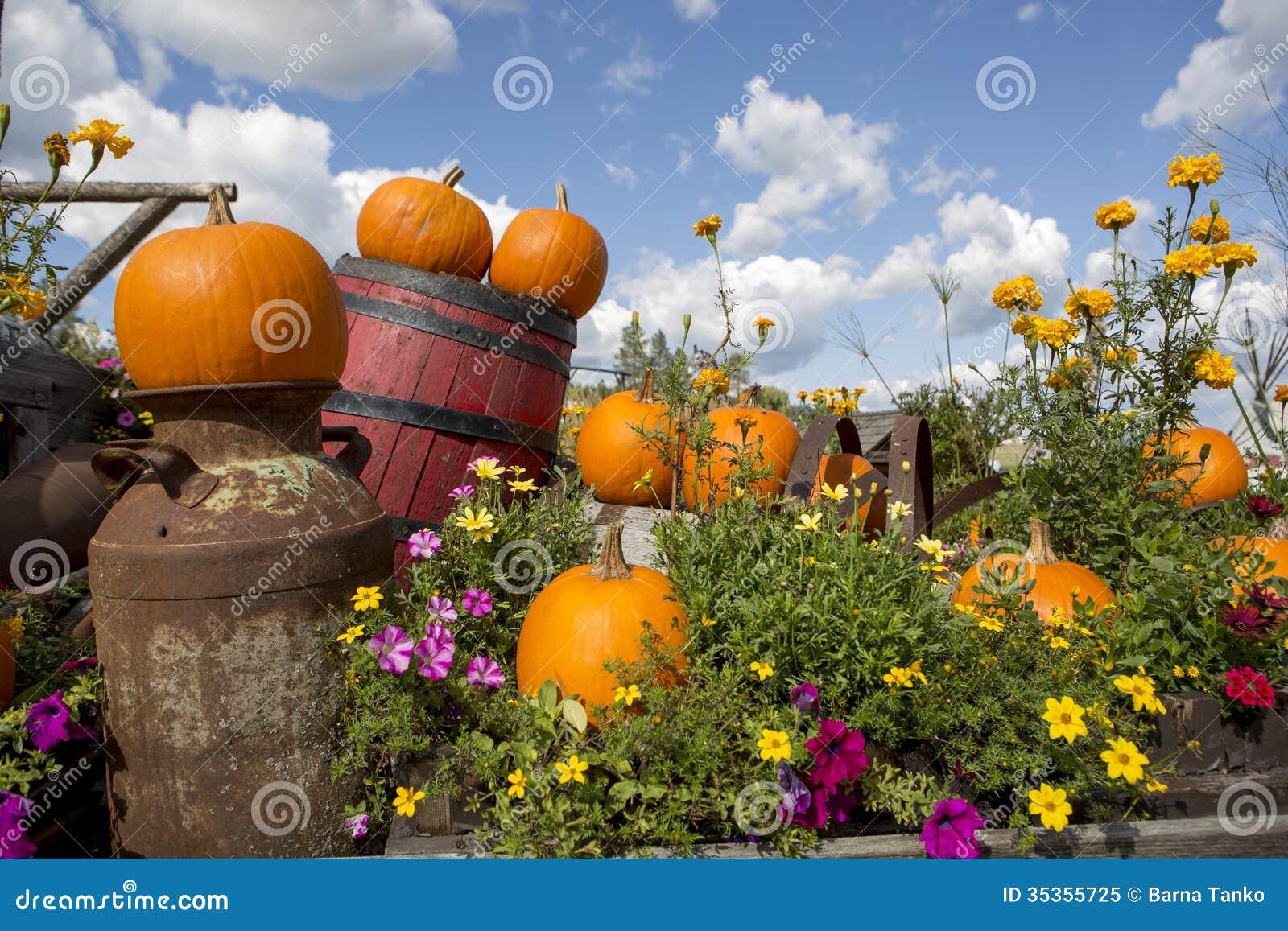Seasonal garden decorations stock image image 35355725 for Decoration photo