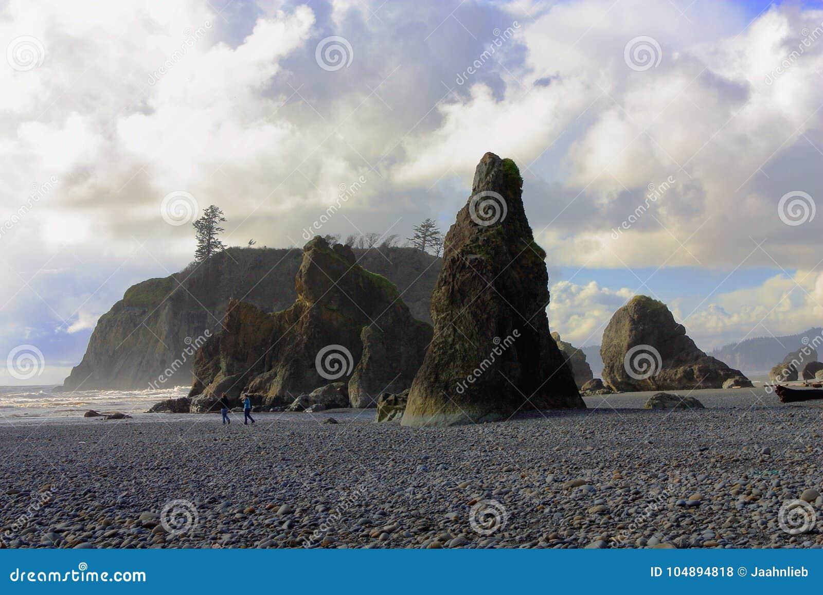 Seastacks bij het Robijnrode Strand van ` s, Olympisch Nationaal Park, Washington