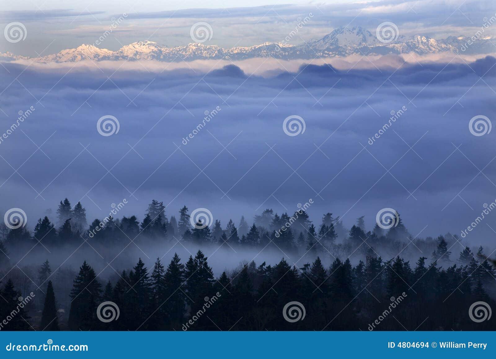 Seattle onder de Mist