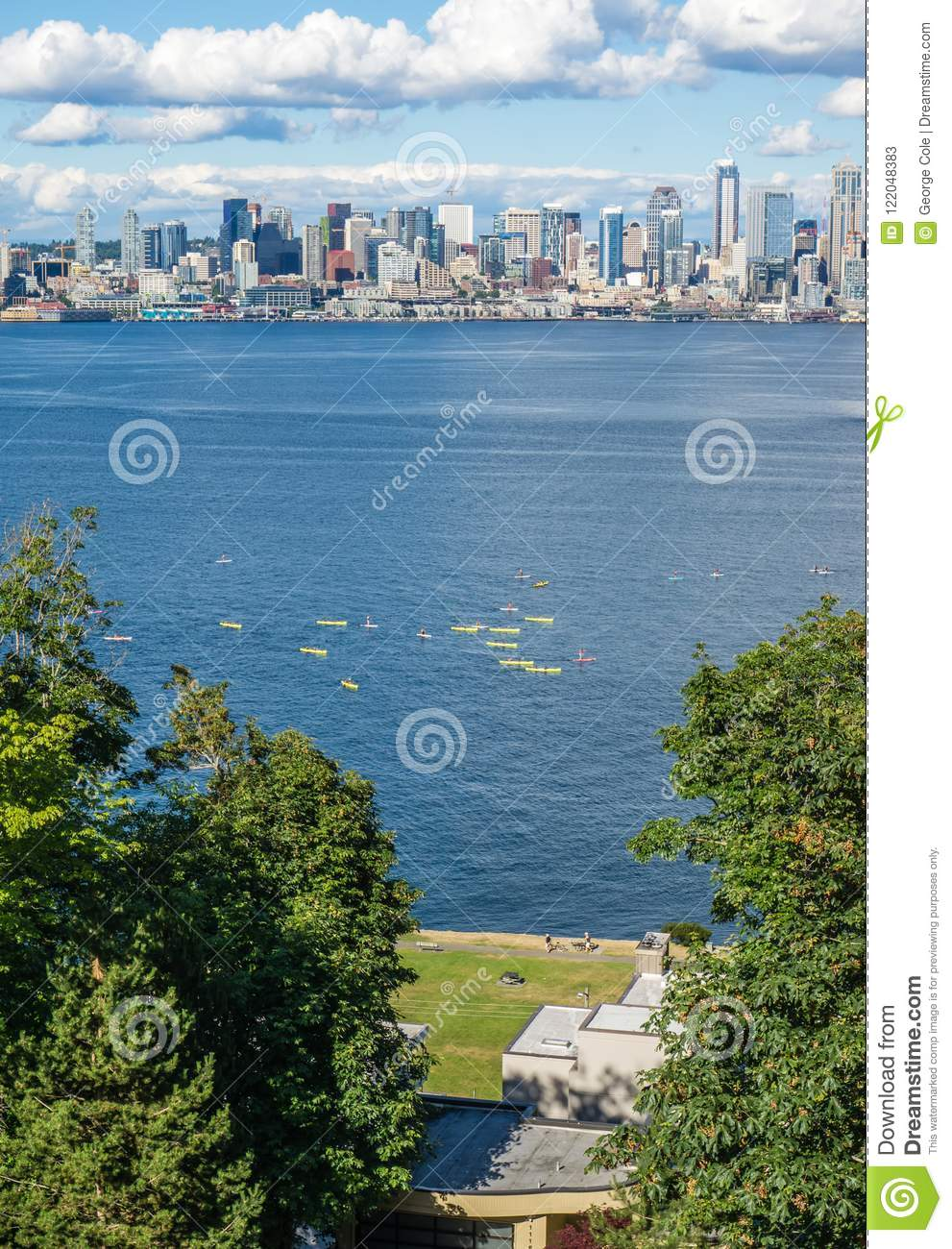 Seattle Skyline And Kayakers