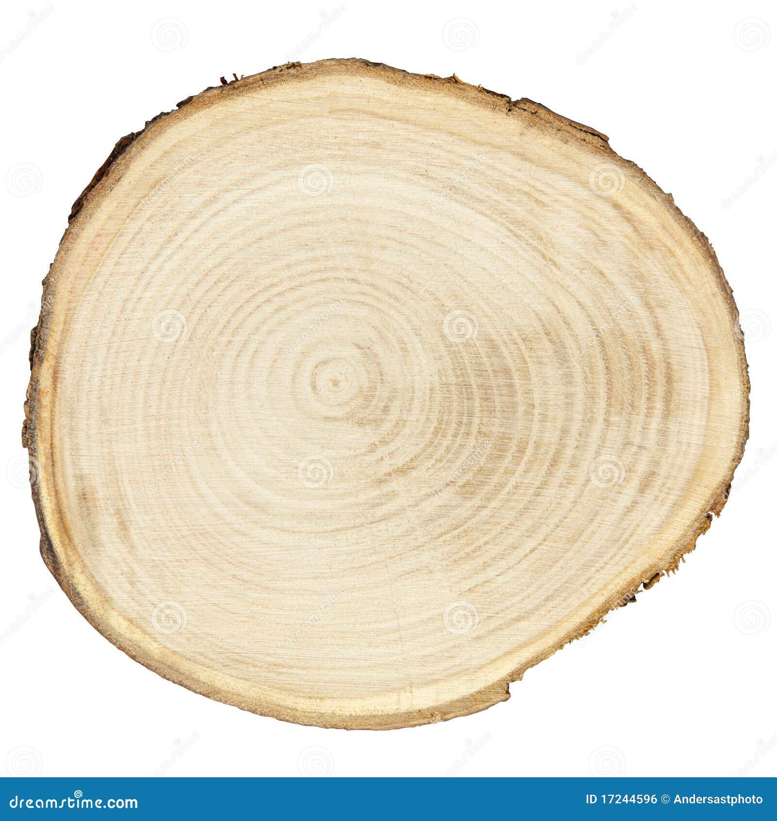 Secção transversal da madeira