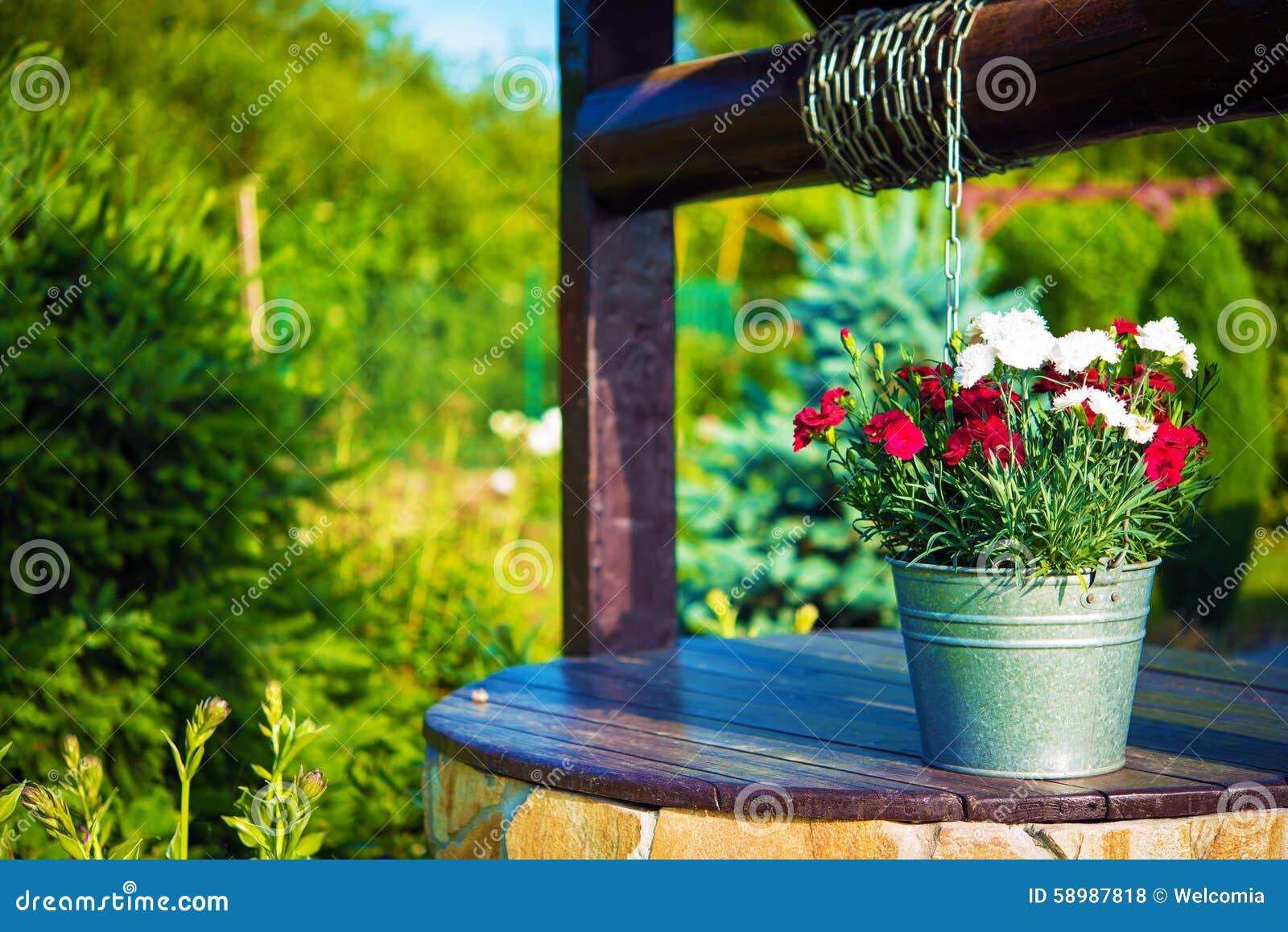 Secchio dei fiori su un pozzo fotografia stock immagine for Plantas perennes exterior