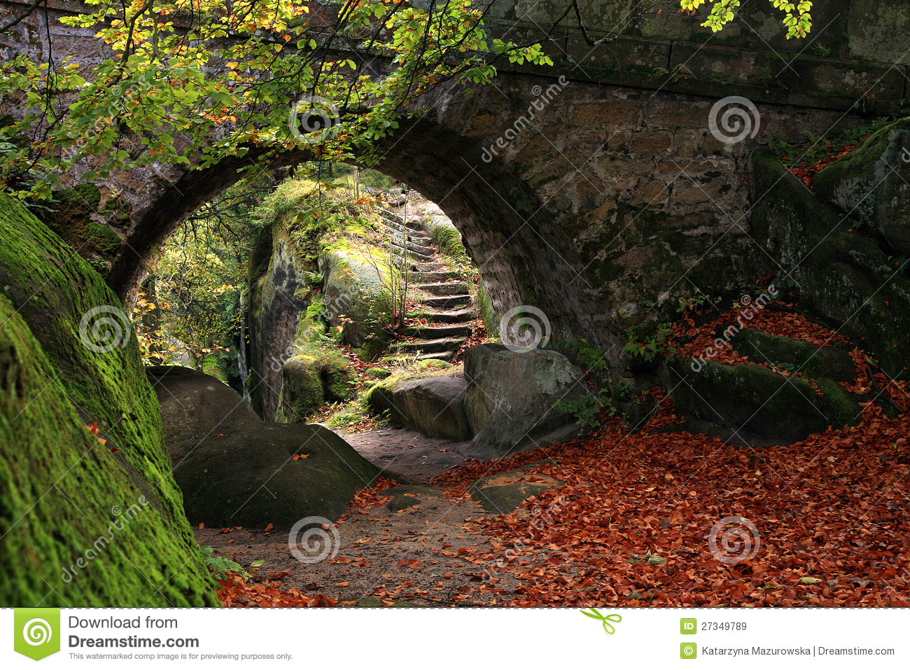 Secret Garden Stock Image Image Of Nature Branches 27349789