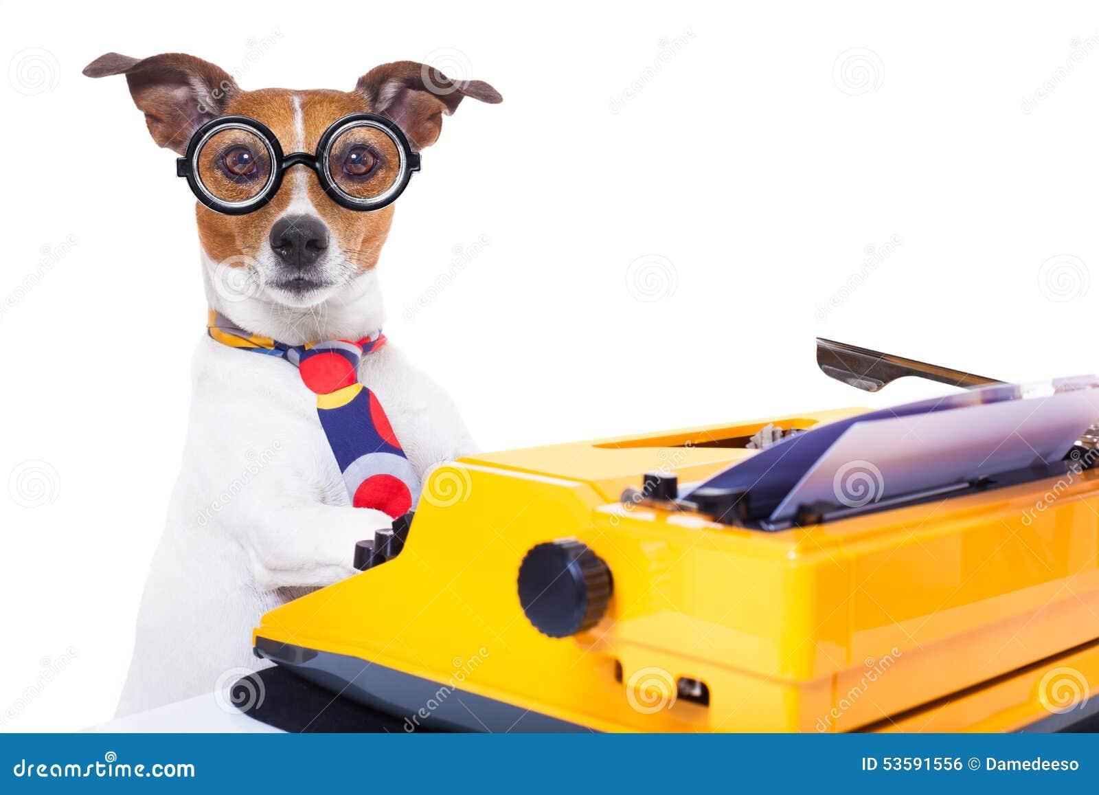 Secretary Typewriter Dog Stock Photo Image 53591556