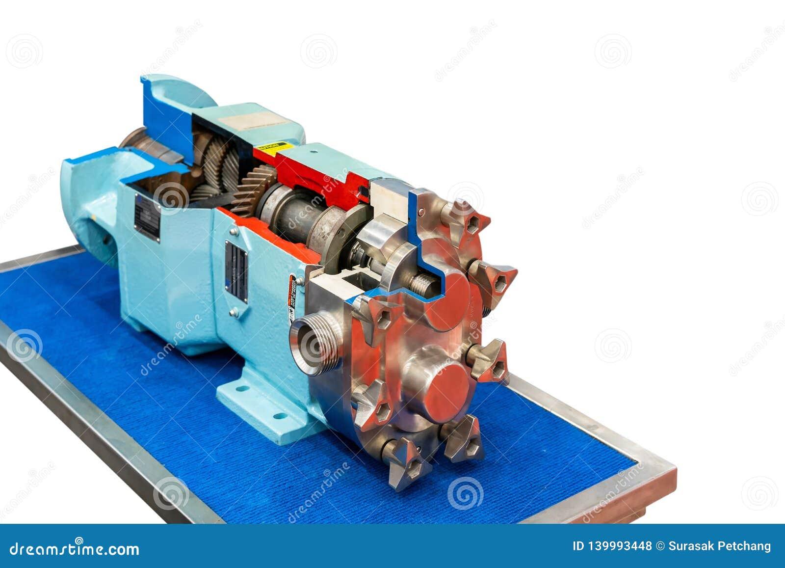 Section transversale haute étroite de la technologie de pointe et de la qualité rotatoires ou pompe à vide de vitesse de lobe ave
