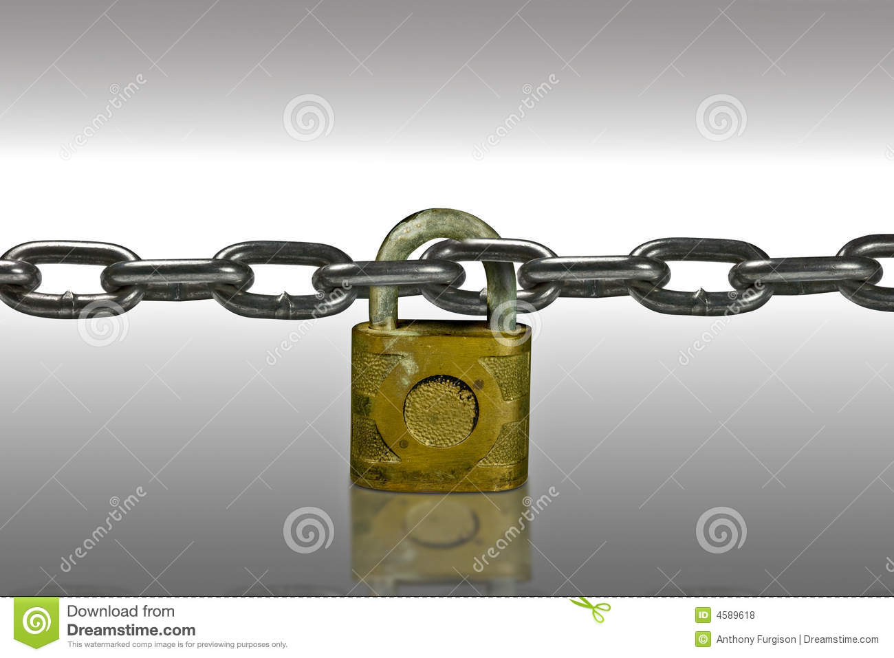Security lock and chain