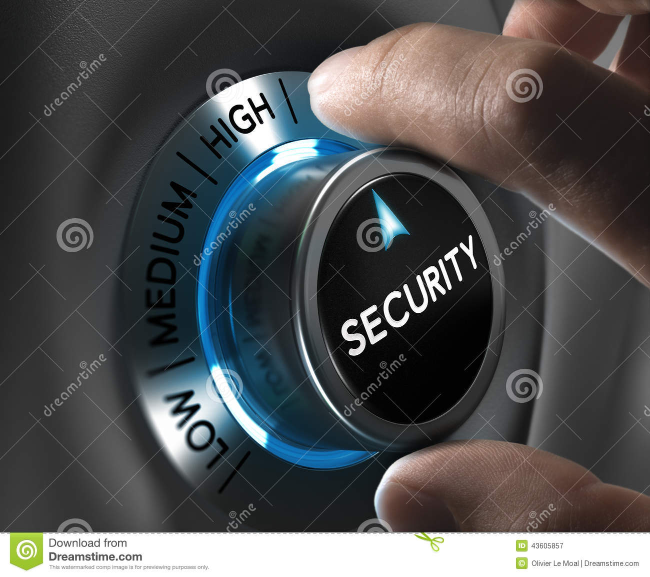 Security And Risk Management Concept Stock Illustration