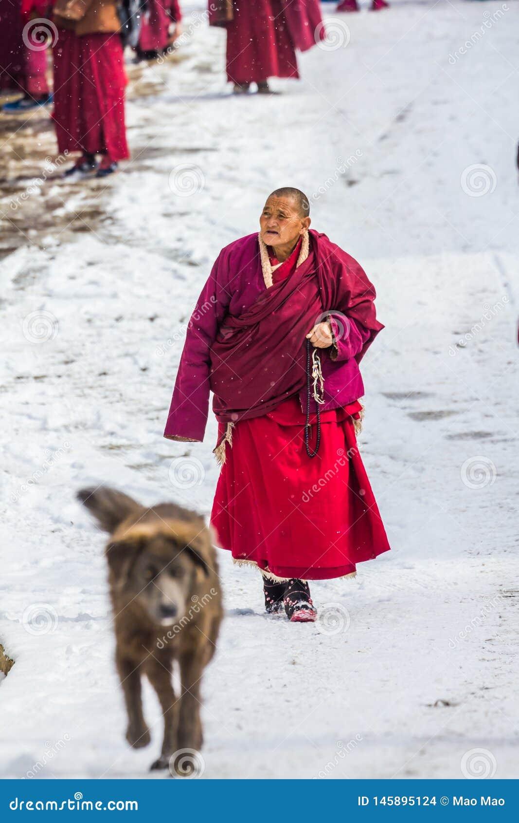Seda, Sichuan, China-marcha 08,2016, monjes en la universidad buddhish de Seda