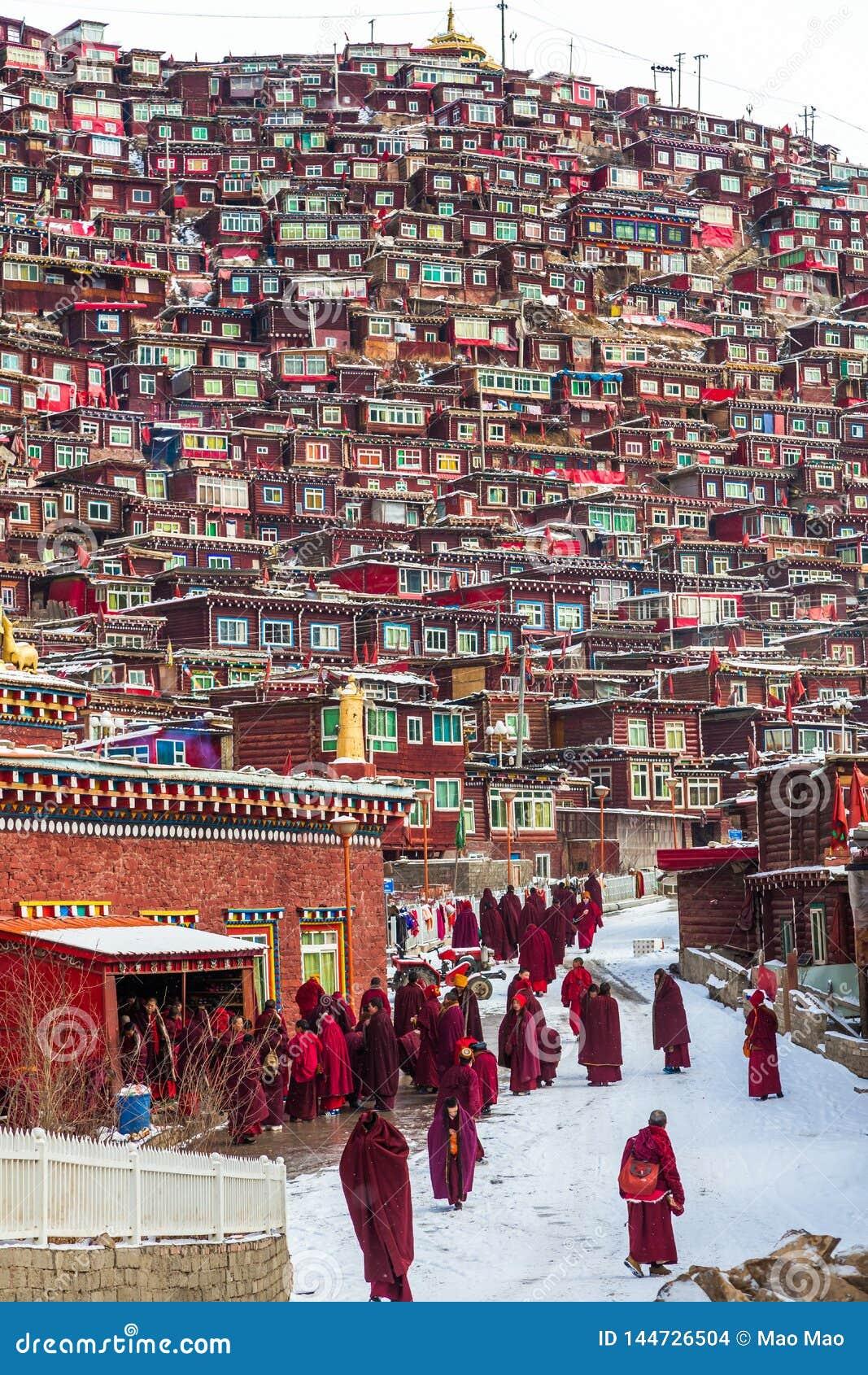 Seda, Sichuan, porcellana-marzo 08,2016, monaci all istituto universitario buddhish di Seda