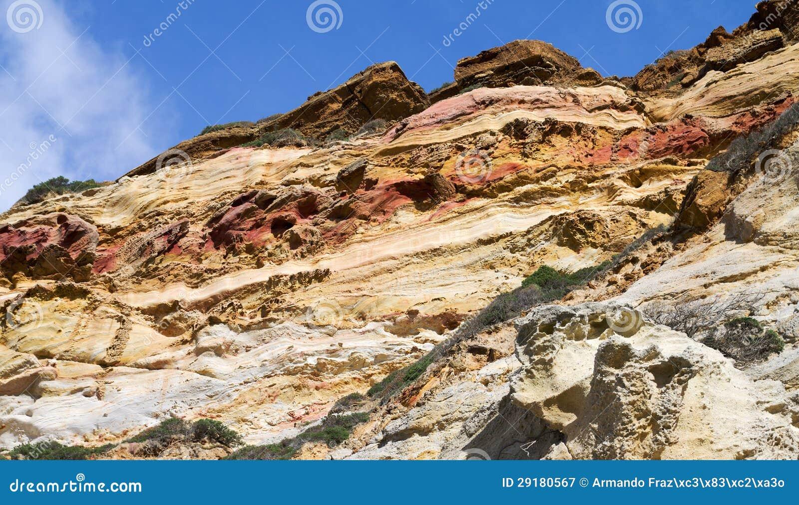 Sedimentary carbonate rocks