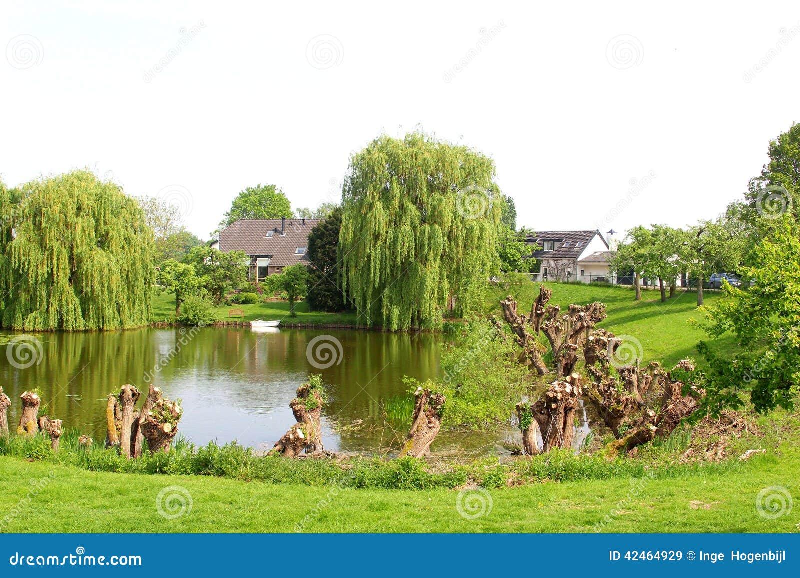 See, Boot, Häuser und pollarded Weiden, Holland