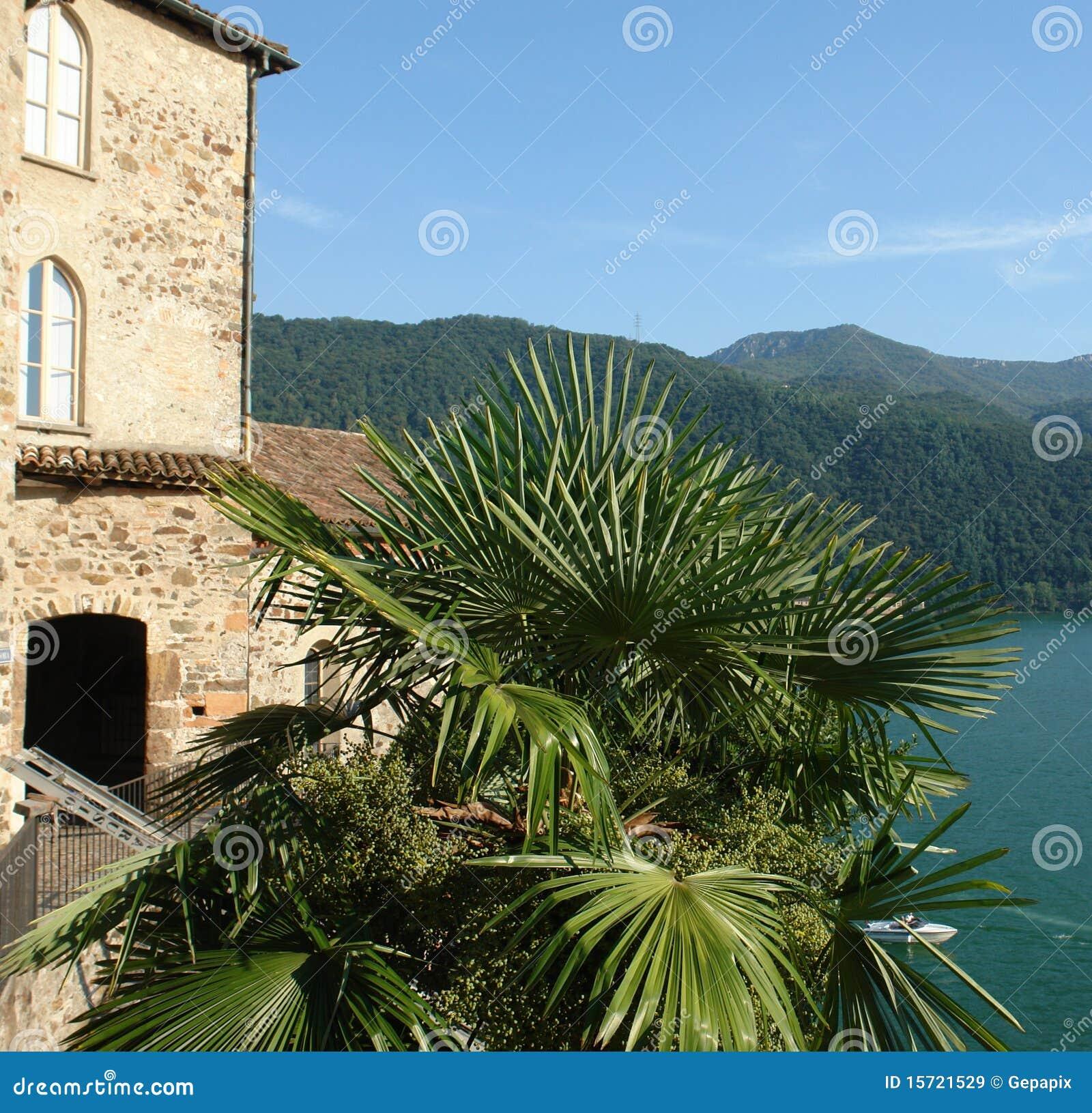 See Lugano