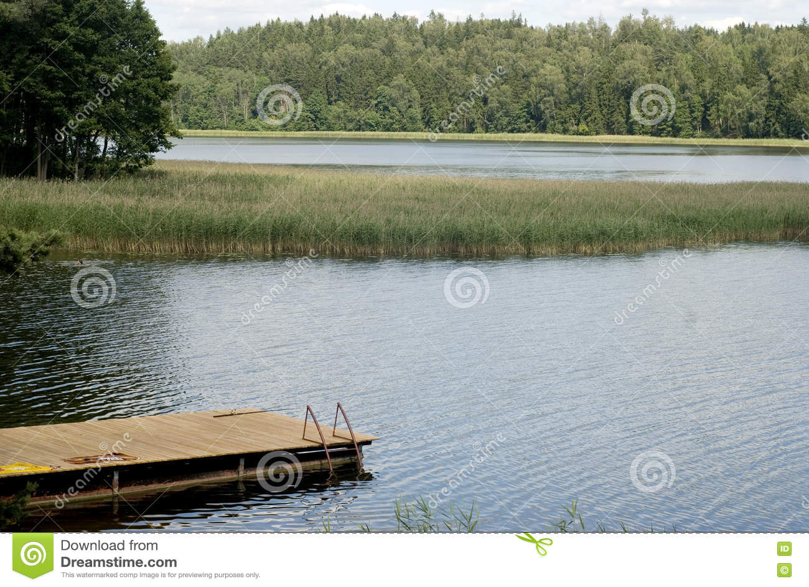 See, Wald, Brücke