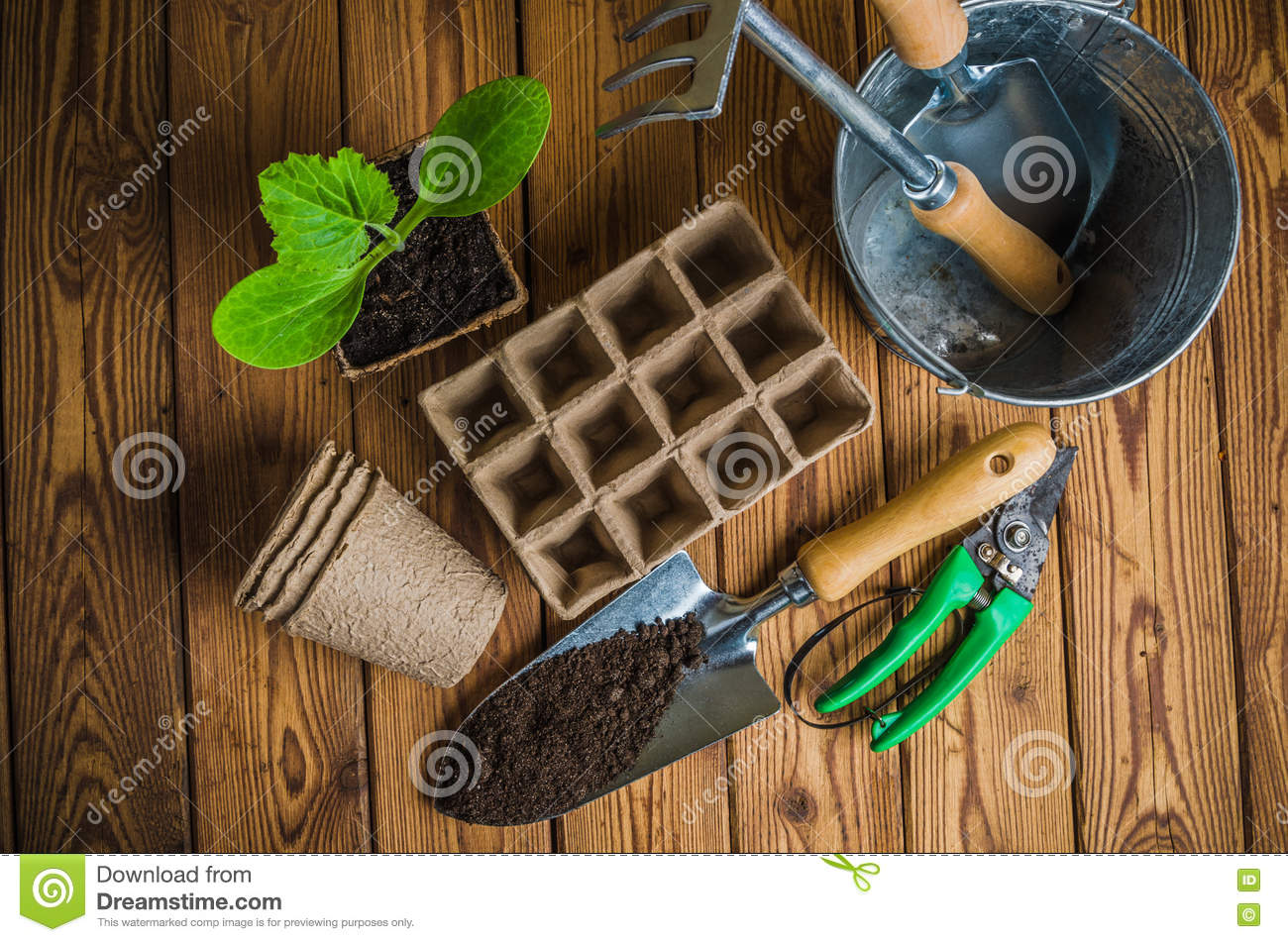 Seedlings and garden tools on wooden surface top view for Top gardening tools 2016
