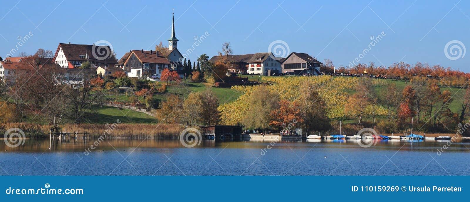 Seegraben, village on the shore of lake Pfaffikon. Colorful tree