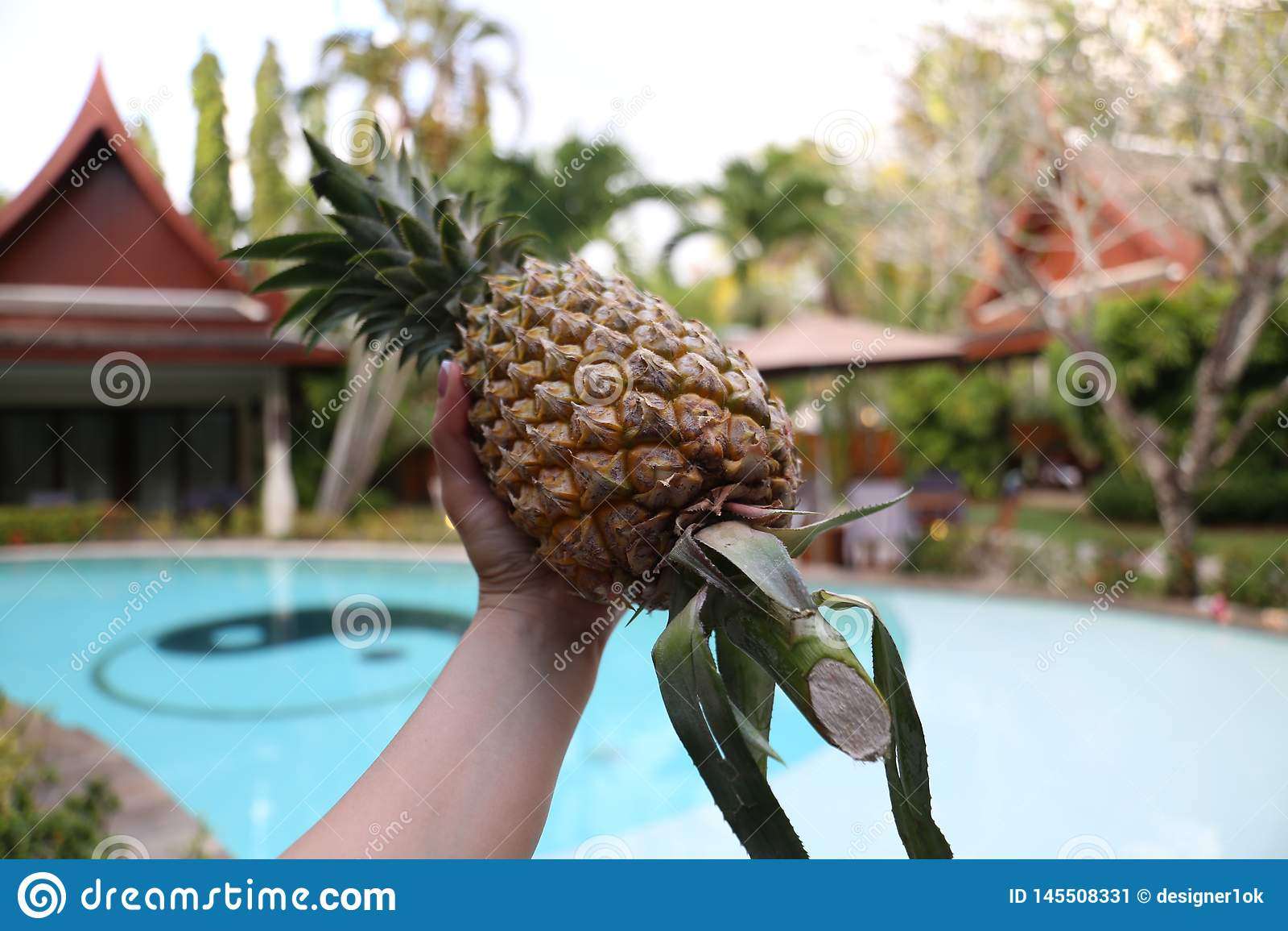 Seet-Ananas in warmem Thailand