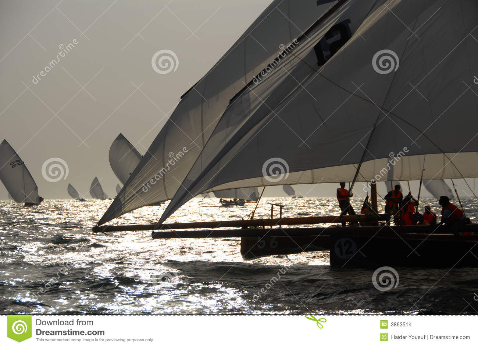 Segel zum zu segeln