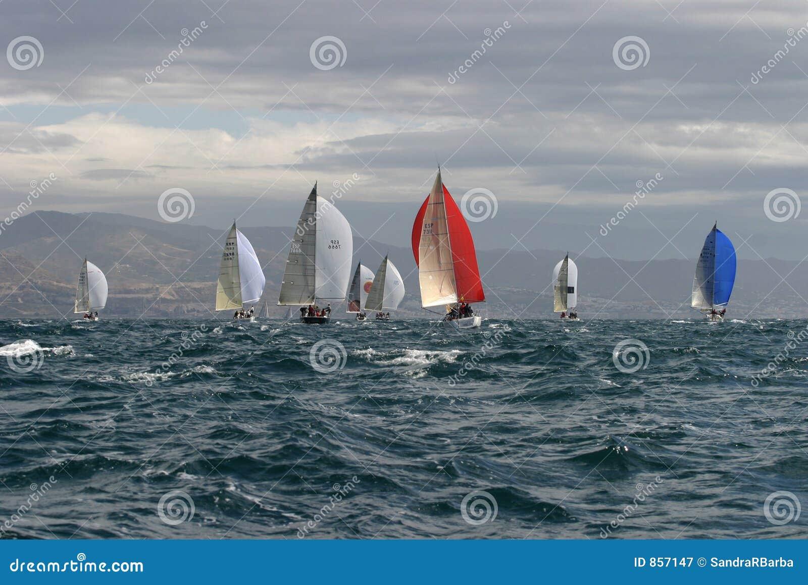 Segeln, yachting #3