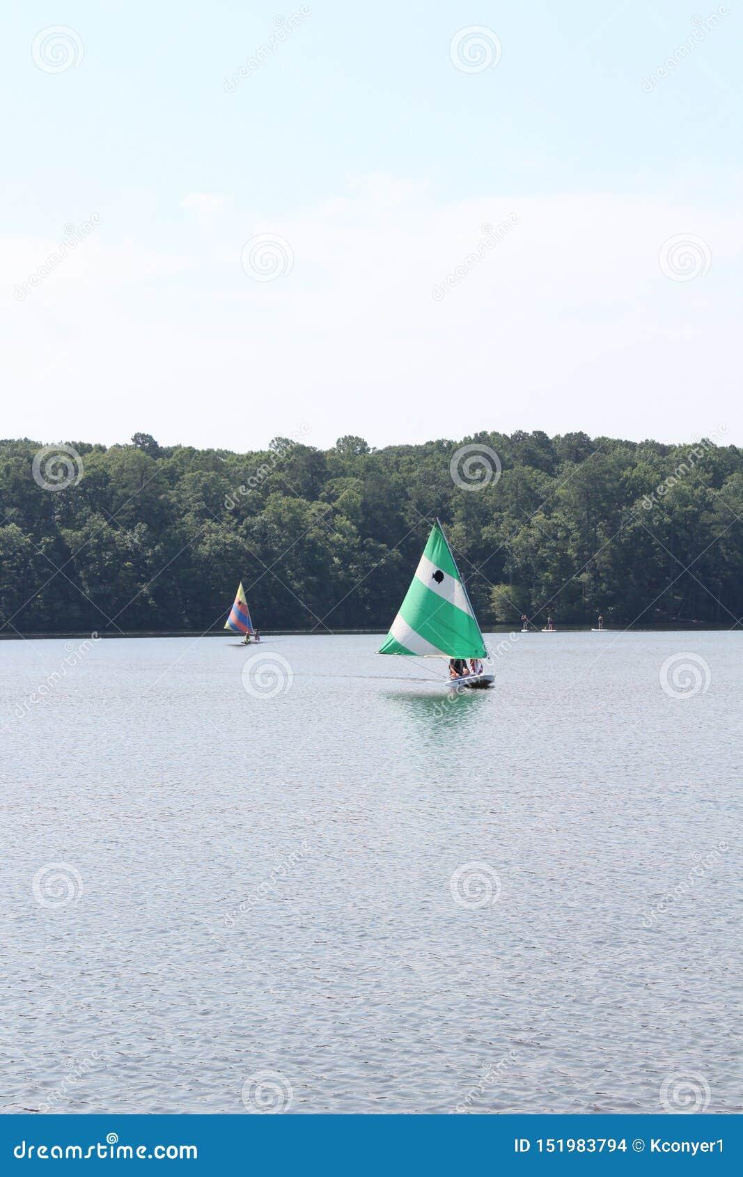 Segla fartyg i sjön