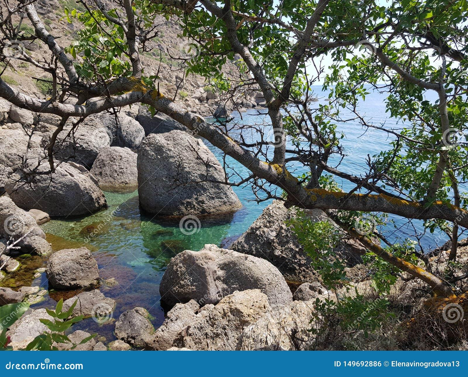 Segla utmed kusten av Crimea