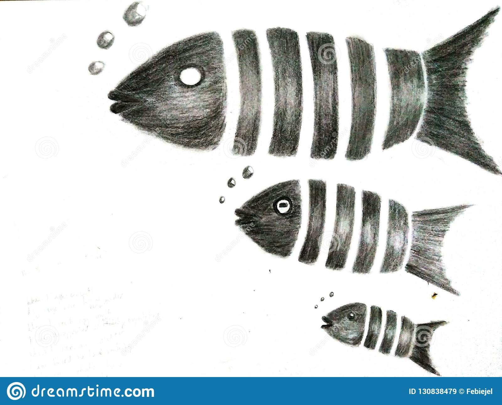 a0599705a11 A pencil drawing of three fishes swimming with bubbles ranging from small