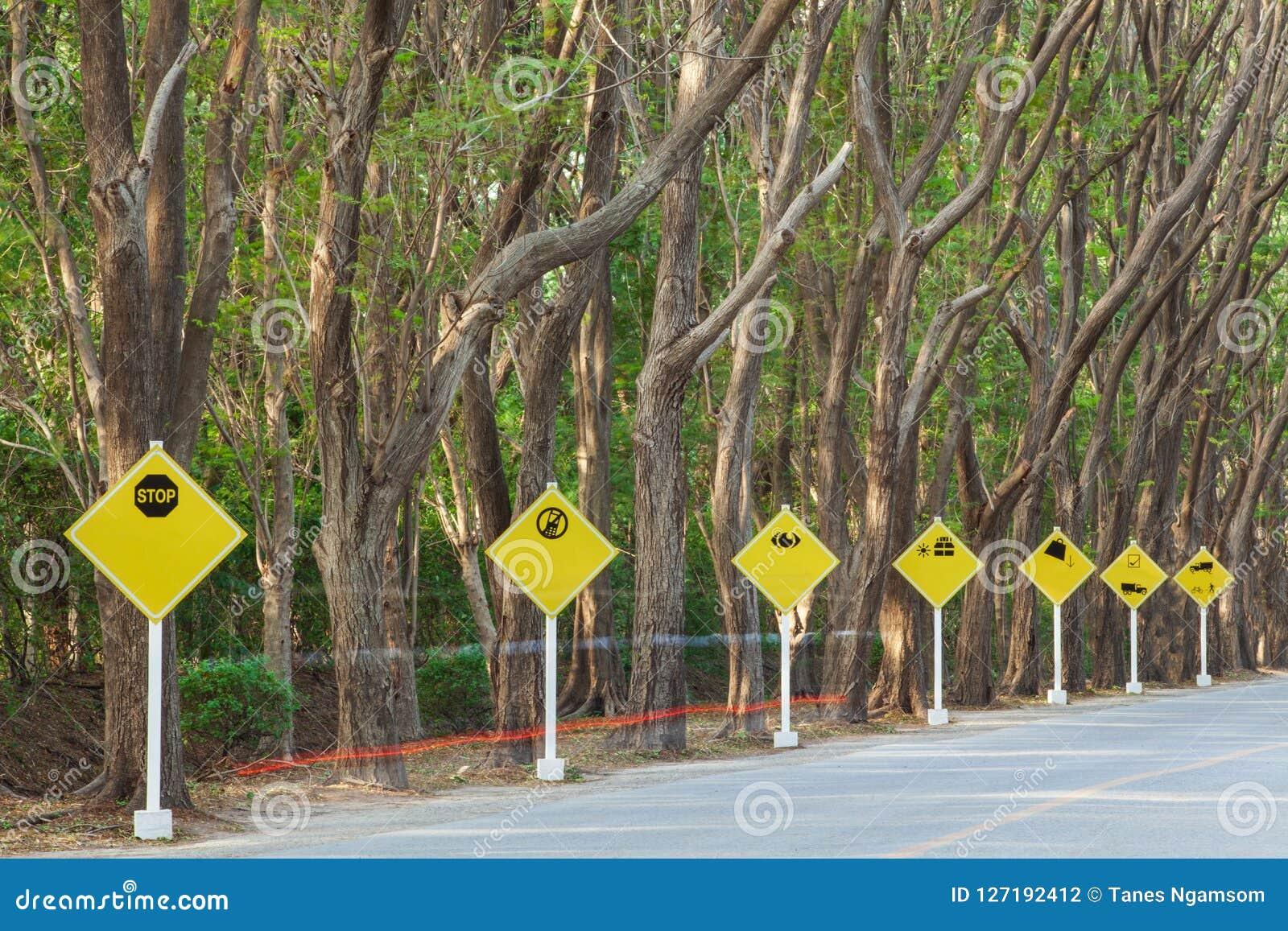 Segnali stradali gialli sulla strada tropicale, bella forma degli alberi