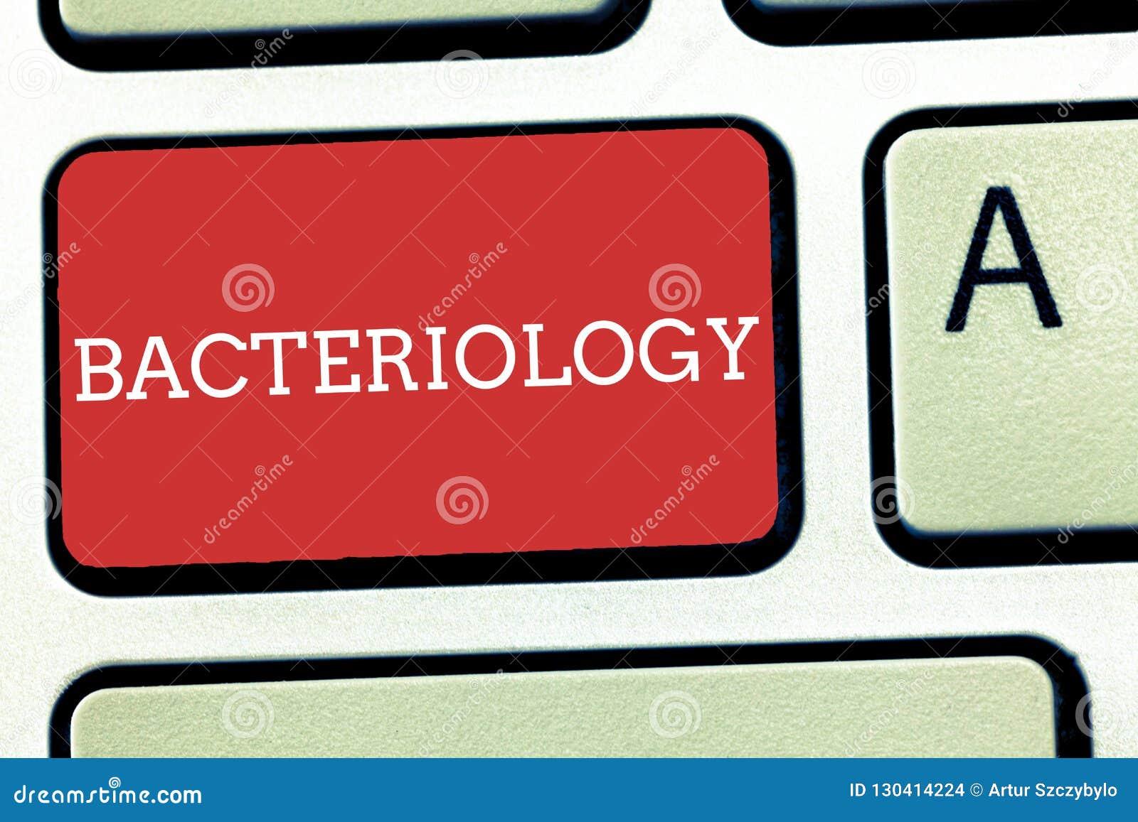 Segno del testo che mostra batteriologia Ramo concettuale della foto di microbiologia che si occupa dei batteri e dei loro usi
