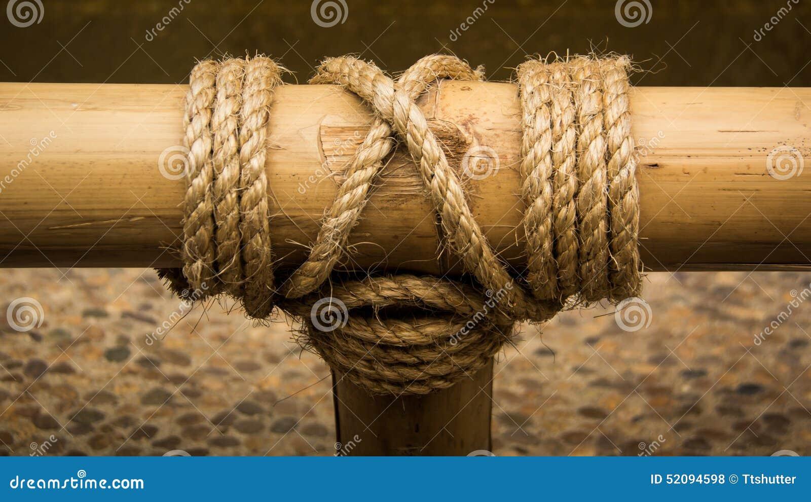 Seilknoten Auf Einem Bambus Stockfoto Bild Von Innen Zeile 52094598