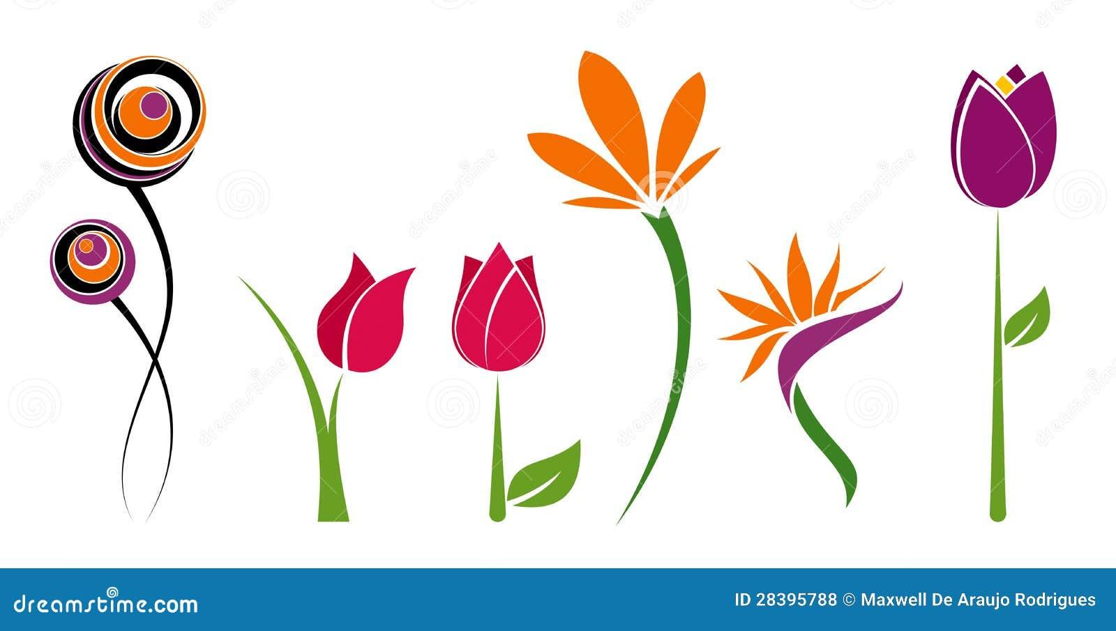 Seis flores