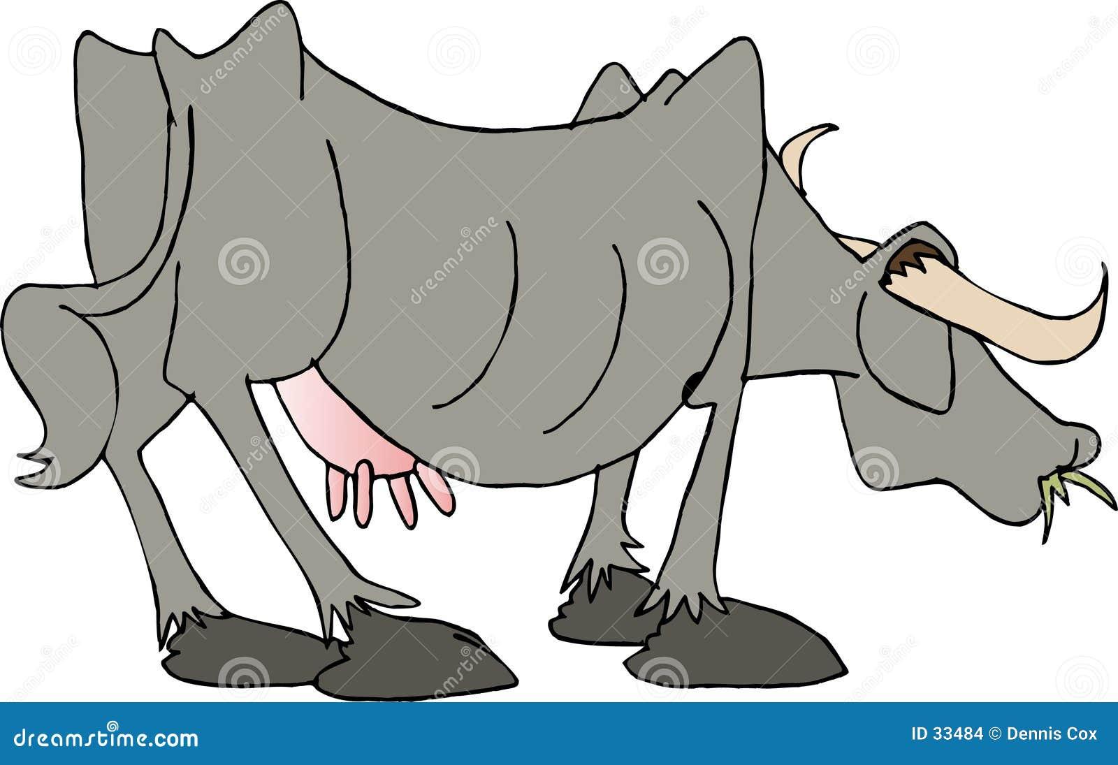 Seite von Rindfleisch II