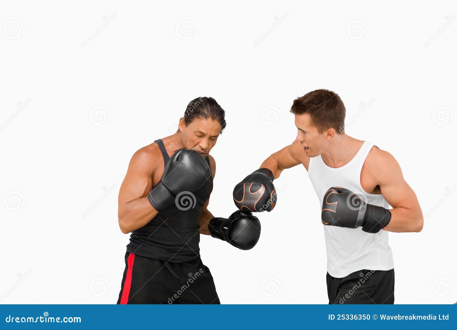 Seitenansicht der kämpfenden Boxer