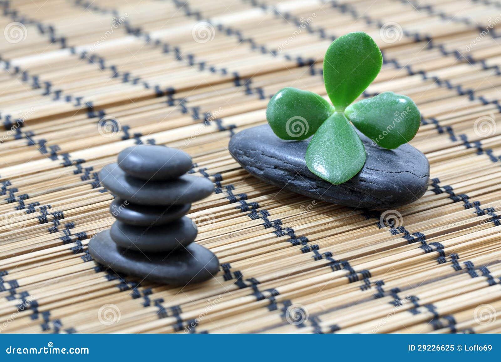 Download Seixos do zen imagem de stock. Imagem de succulent, pedra - 29226625