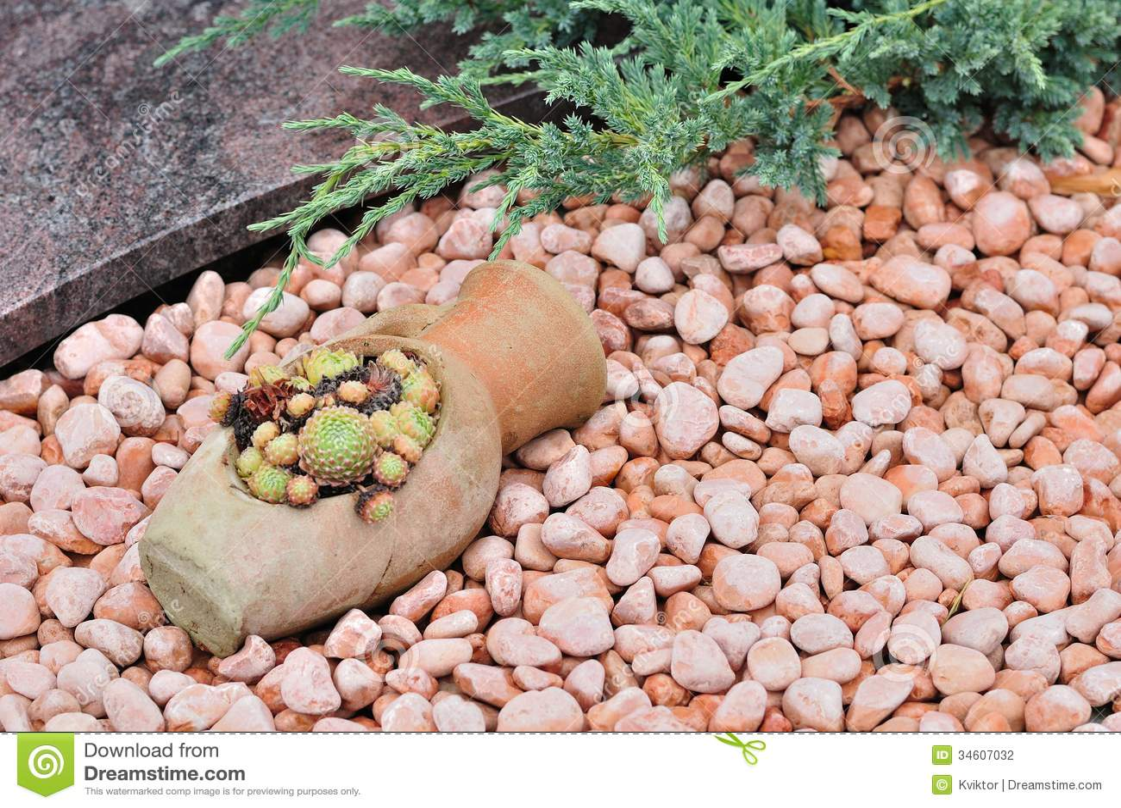 Seixos E Plantas No Jardim Ornamental Fotografia de Stock  Imagem