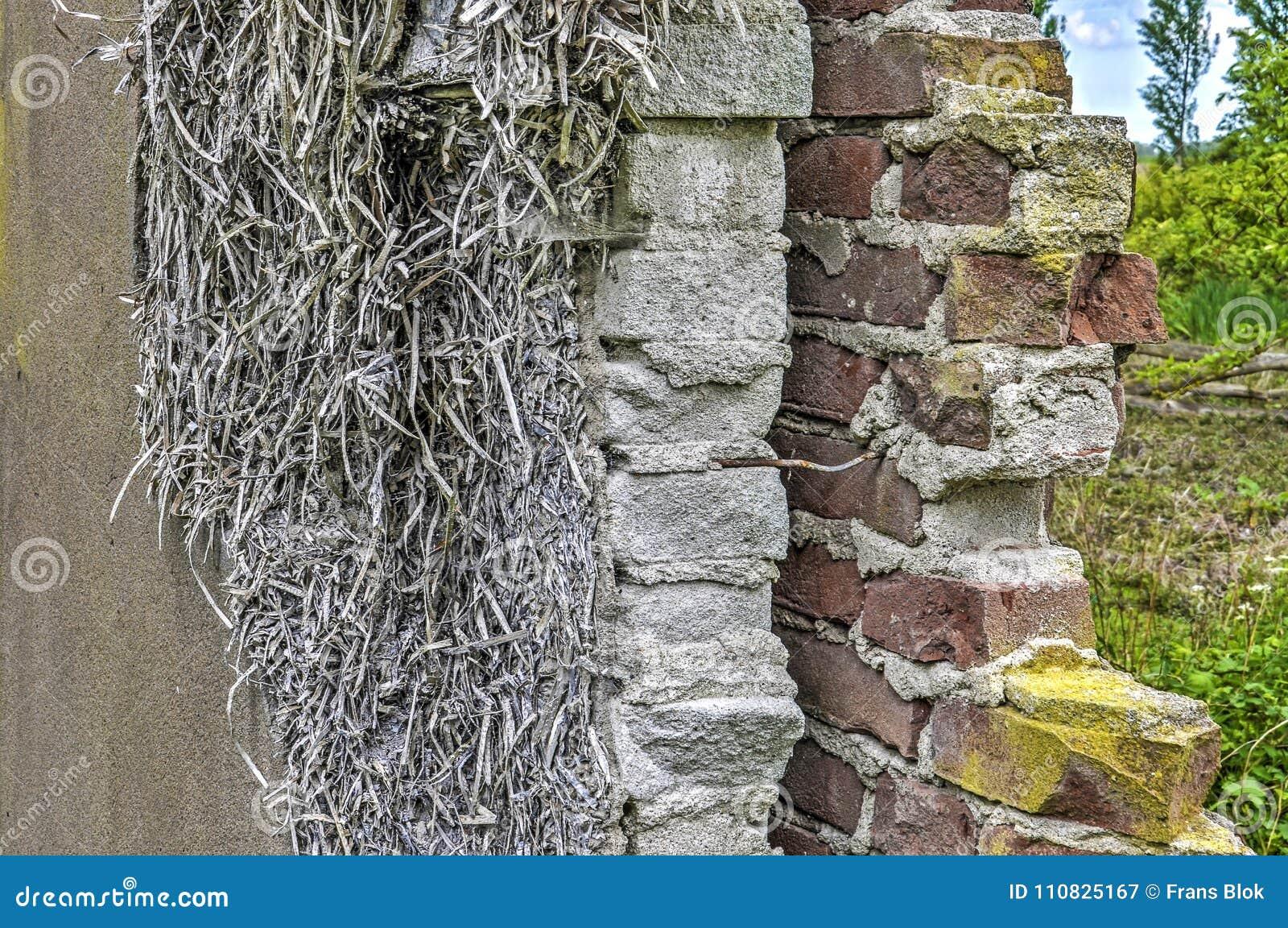 Sekcja ściana z cegieł